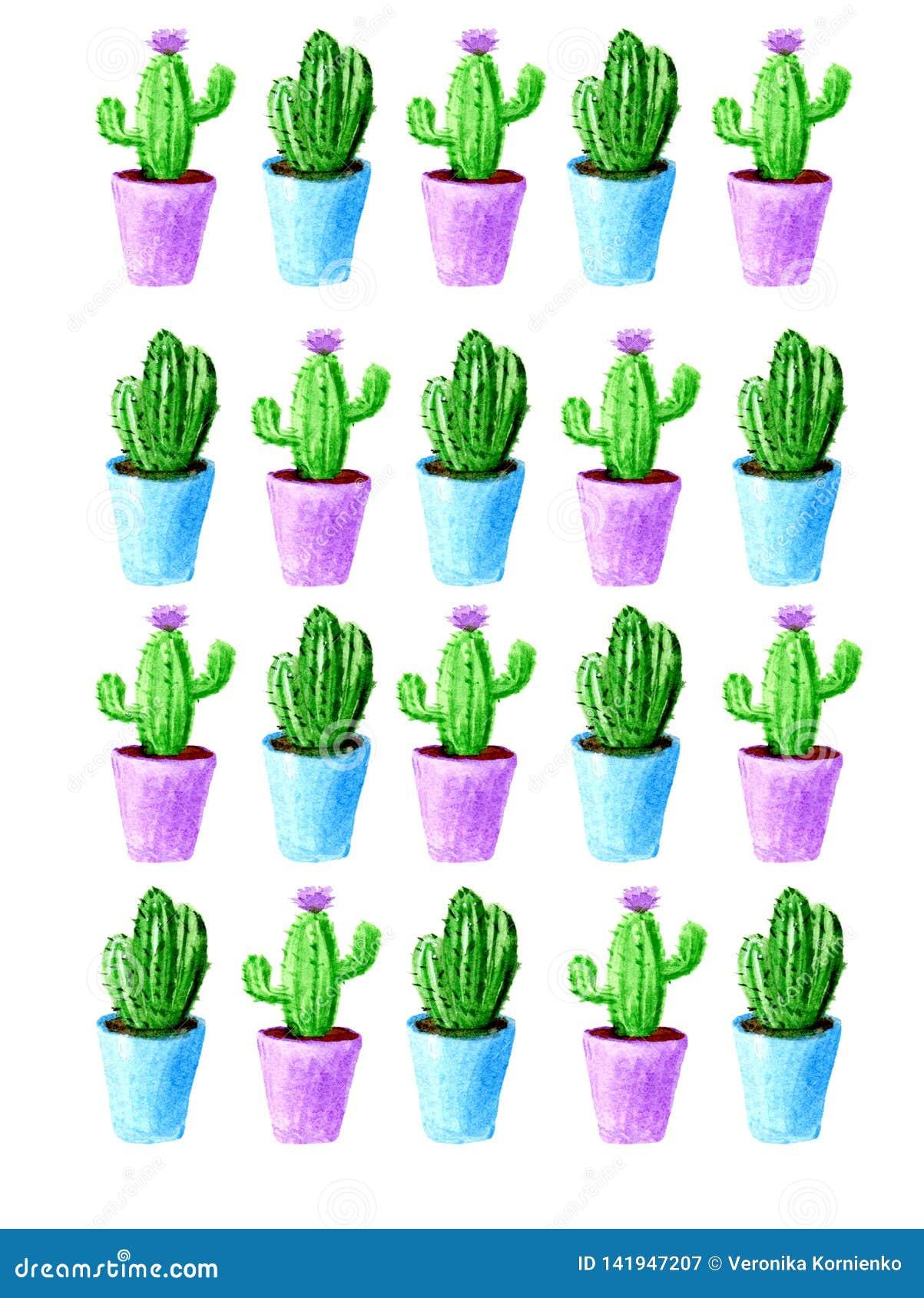 Modello del cactus dell acquerello con il vaso blu e viola su fondo bianco