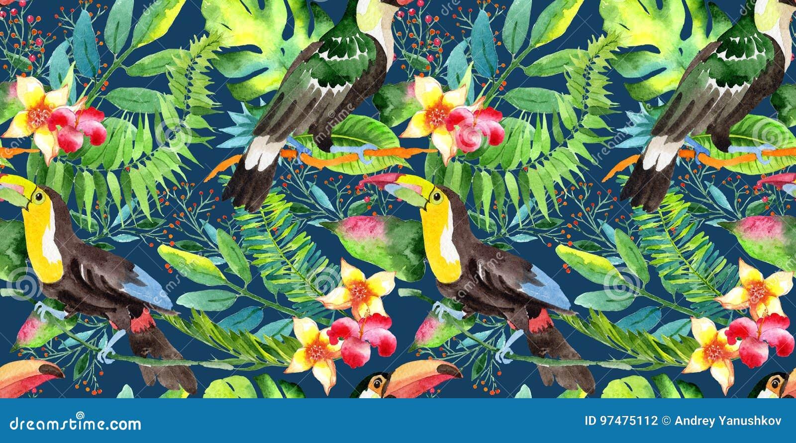 Modello del tucano dell uccello del cielo in una fauna selvatica da stile dell acquerello