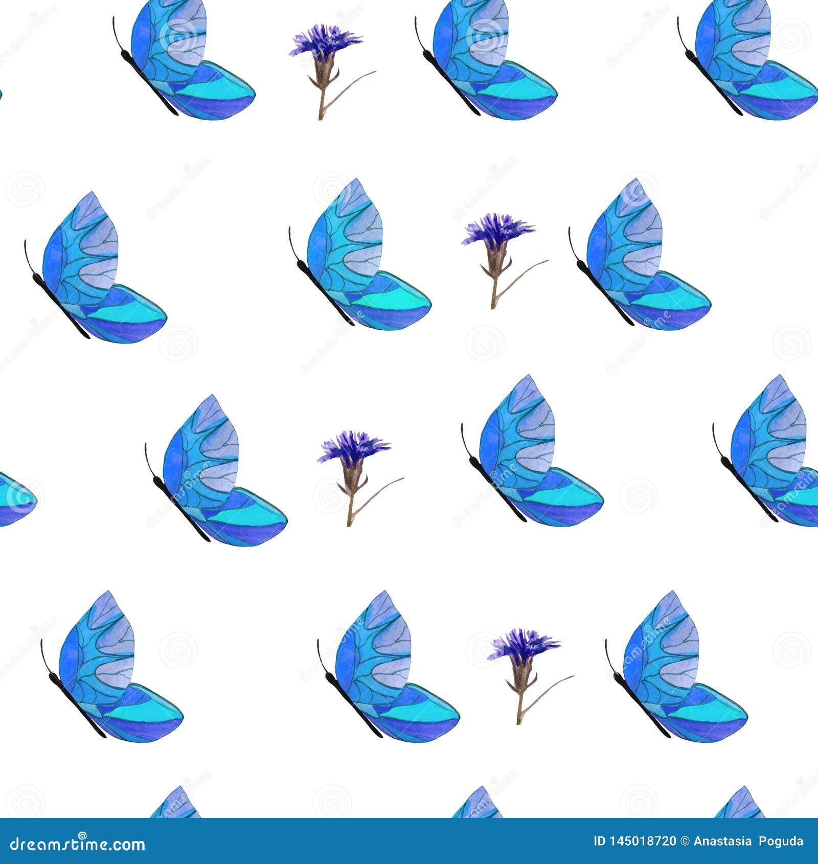 Modello delle farfalle e dei fiori blu