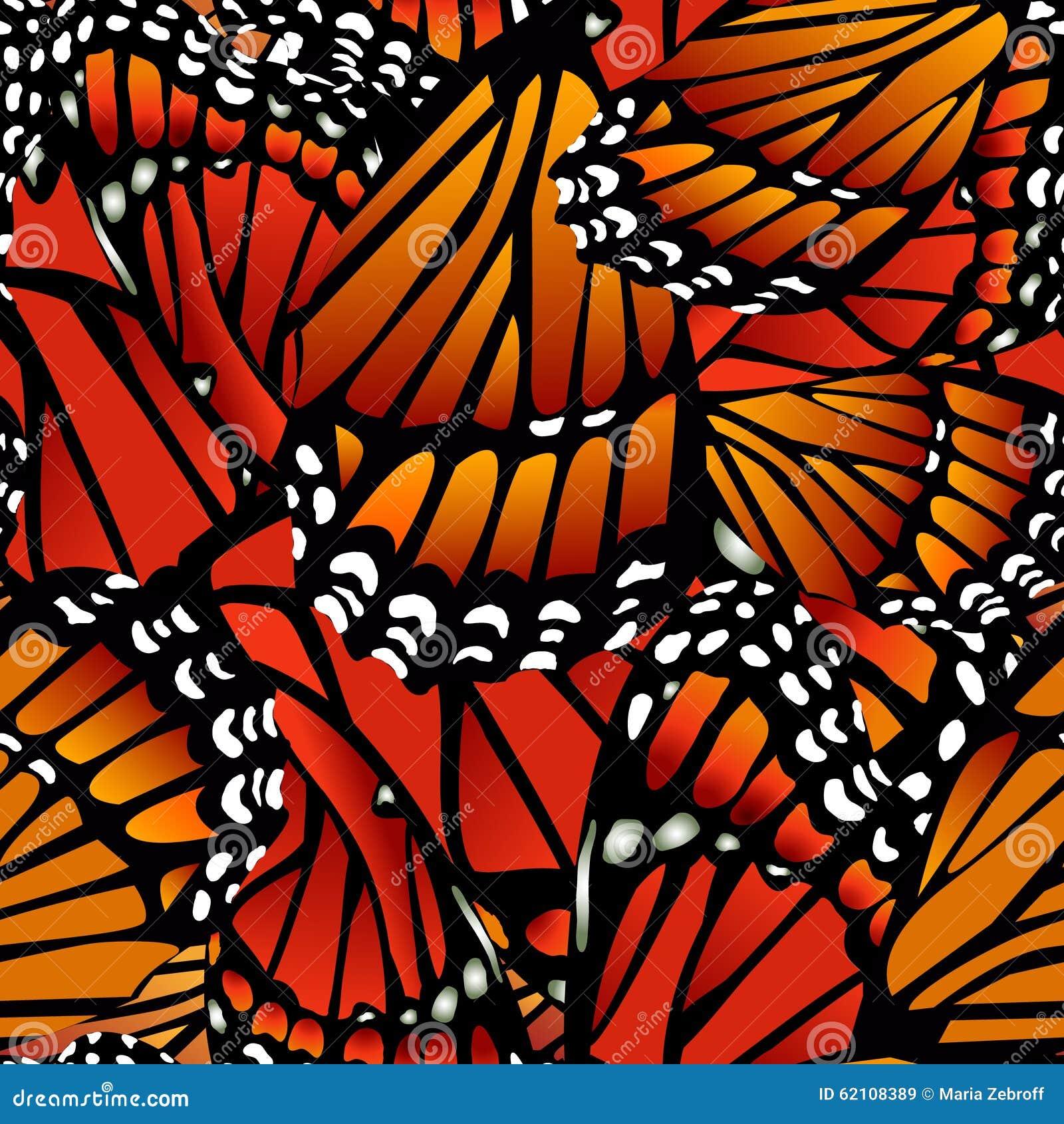 Modello di farfalla senza cuciture