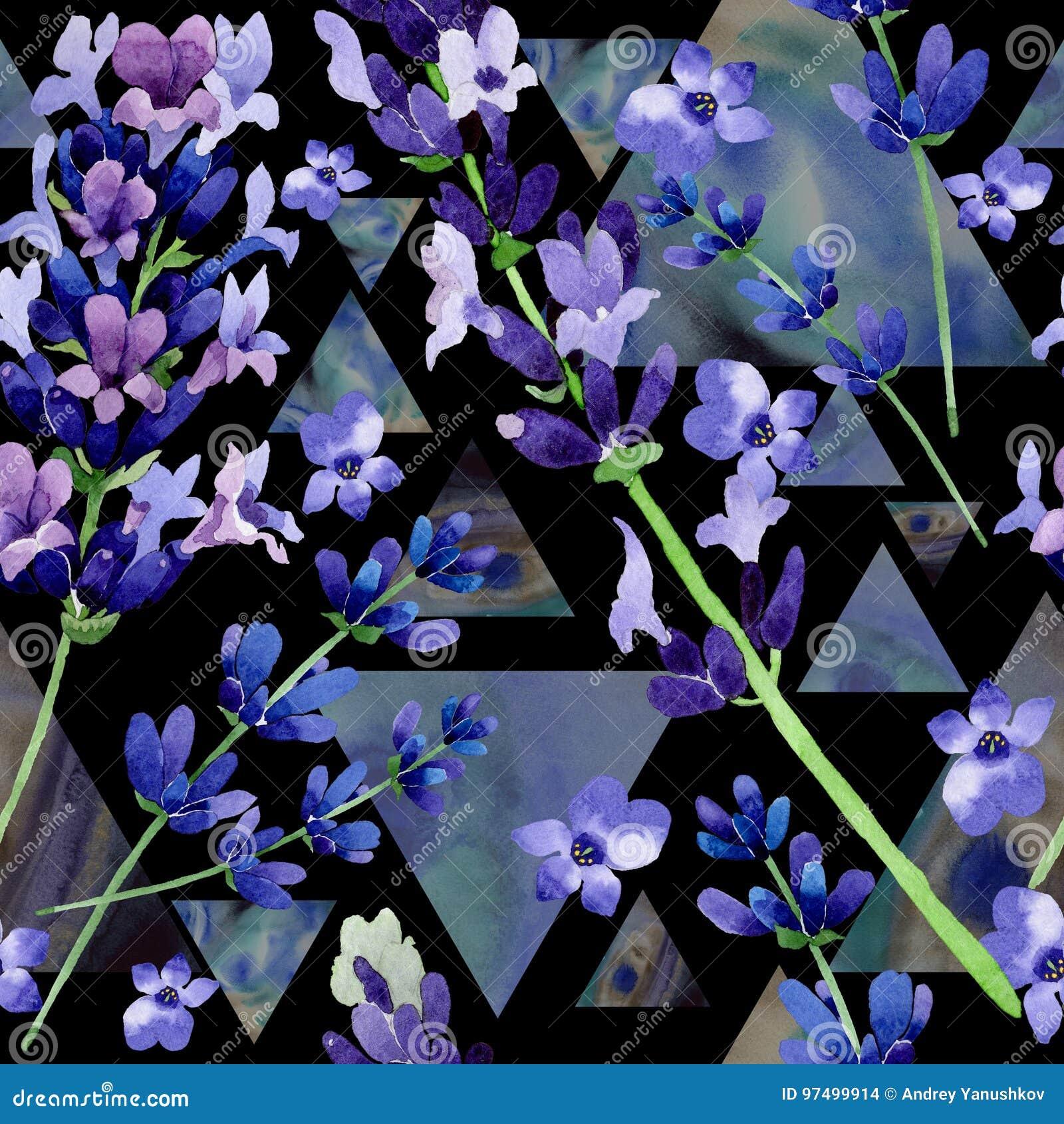 Modello di fiore della lavanda del Wildflower in uno stile dell acquerello