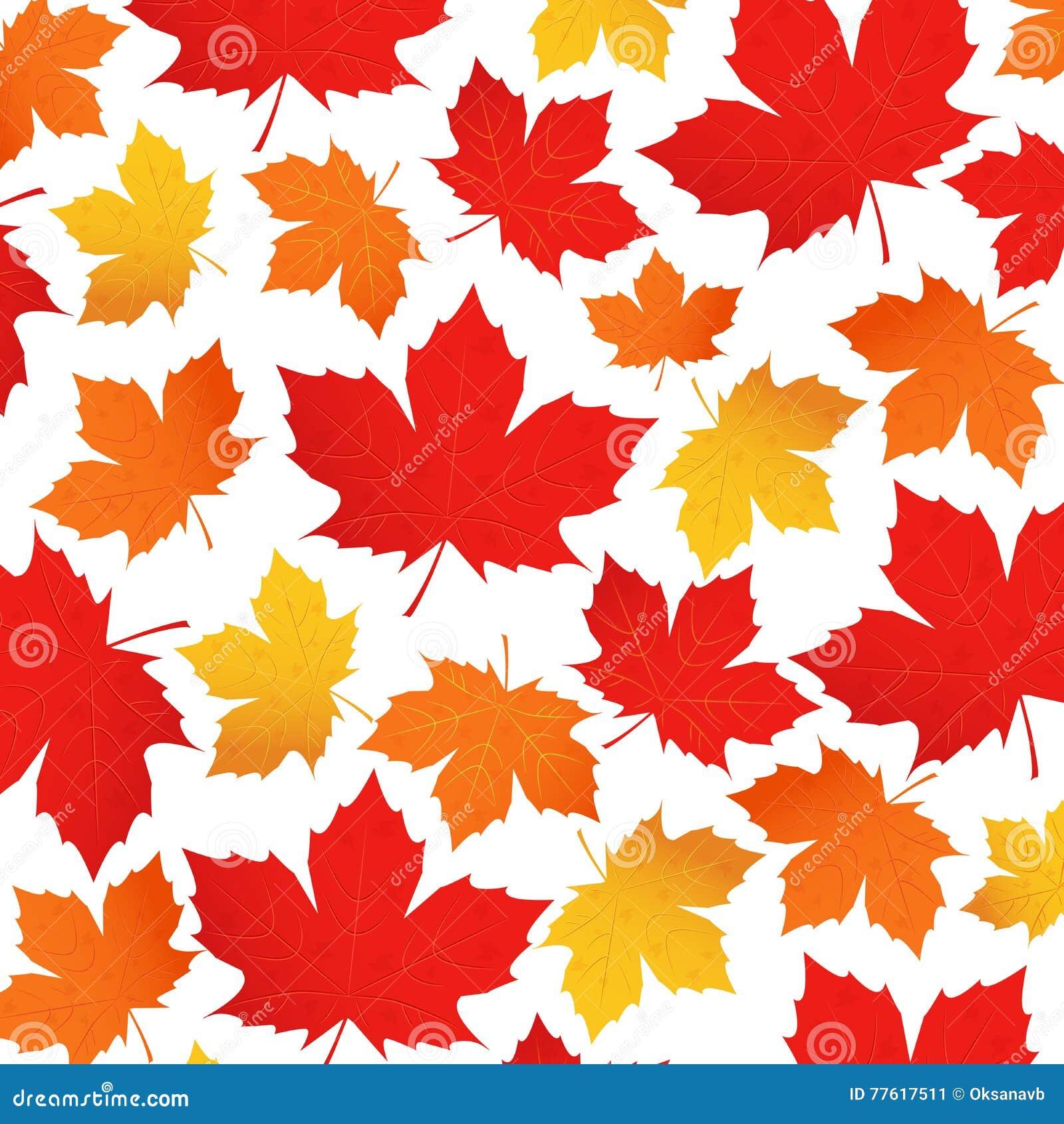 Modello di vettore delle foglie di autunno foglia di acero - Modello di foglia per bambini ...