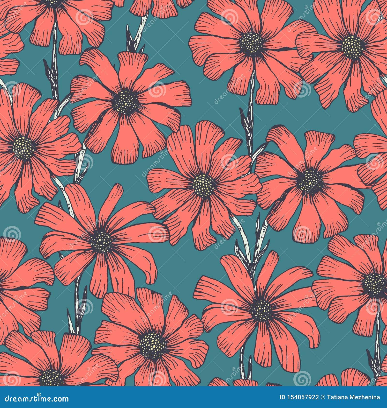 Modello floreale con i fiori rossi della camomilla sul blu