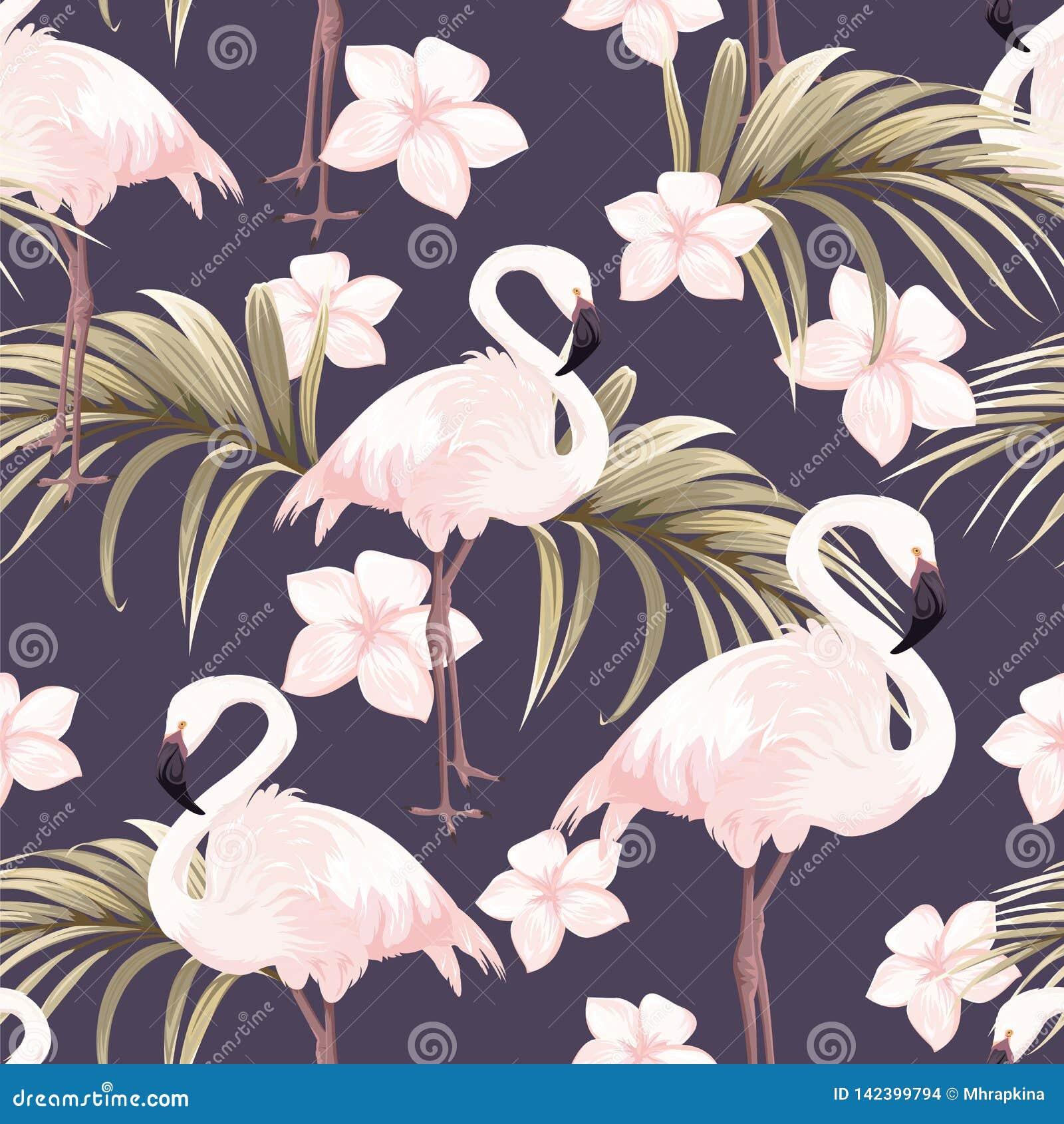 Modello senza cuciture con i fenicotteri rosa ed i fiori bianchi
