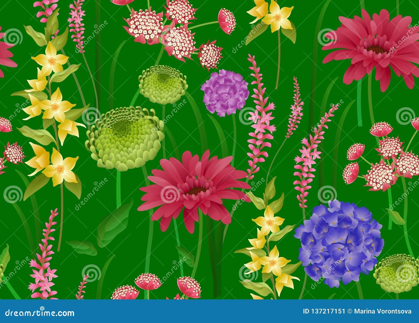 Modello senza cuciture con i fiori della molla su fondo verde
