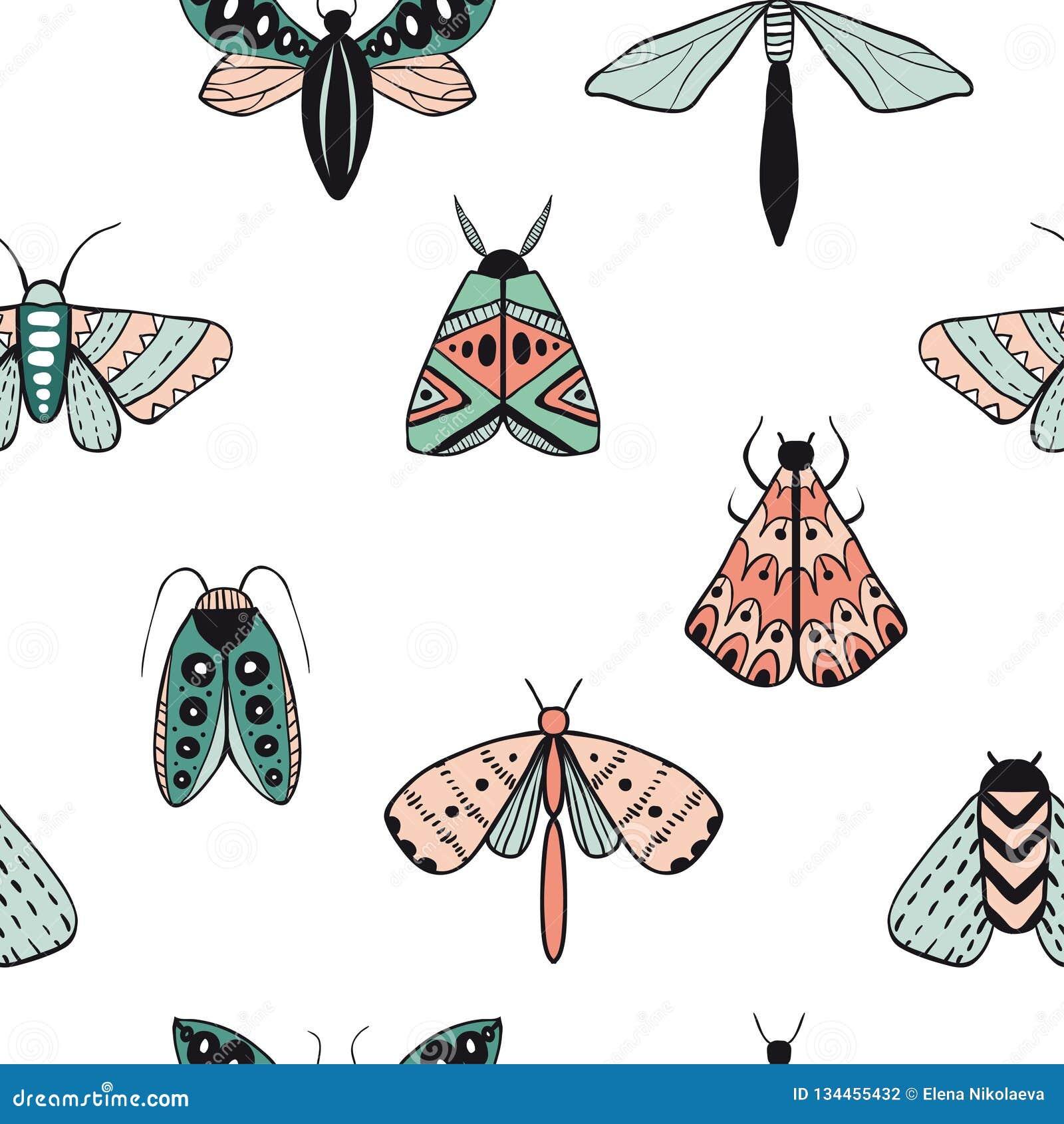 Modello senza cuciture con le farfalle decorative