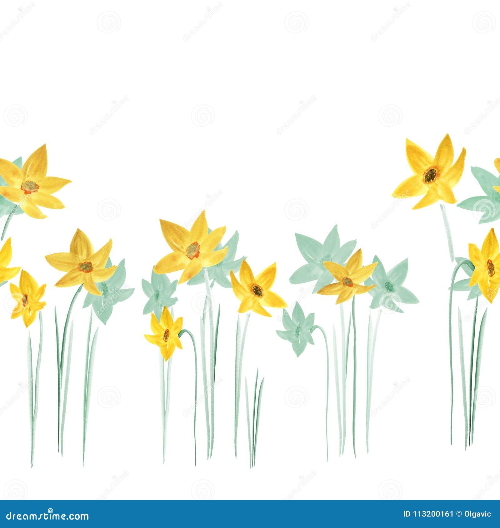 Modello senza cuciture dei fiori gialli e verdi della molla su un fondo bianco watercolor