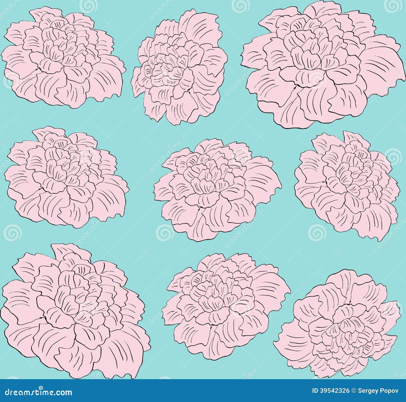 Modello senza cuciture della peonia di rosa del fiore di - Modello di base del fiore ...