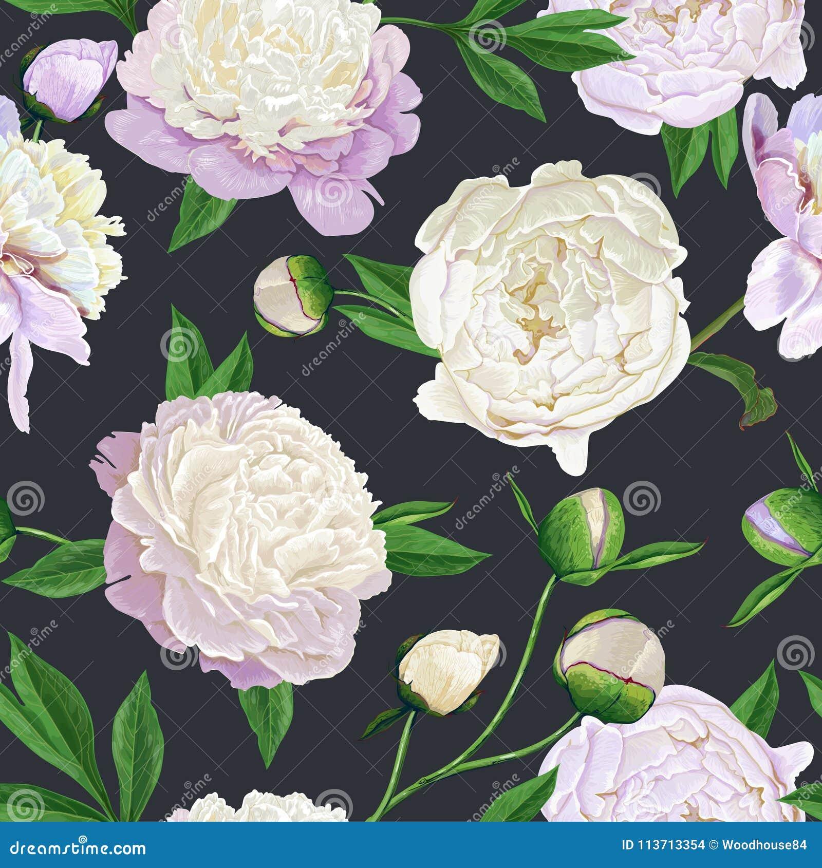 Modello senza cuciture floreale con le peonie bianche Fondo di fioritura dei fiori della primavera per tessuto, stampe, invito di