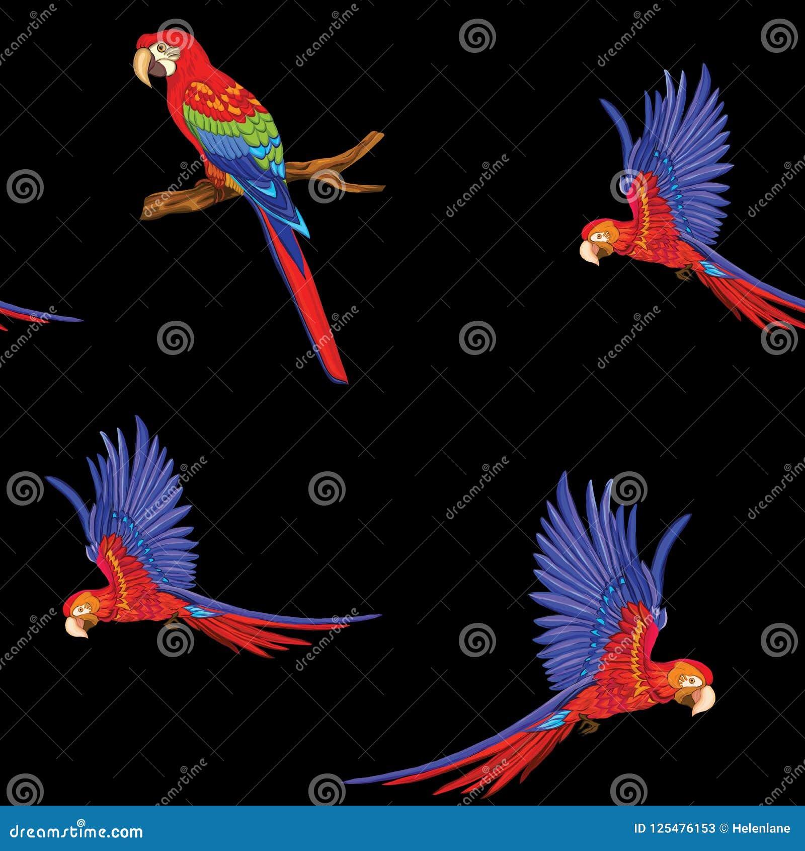 Modello senza cuciture, fondo con gli uccelli Illustrazione di vettore