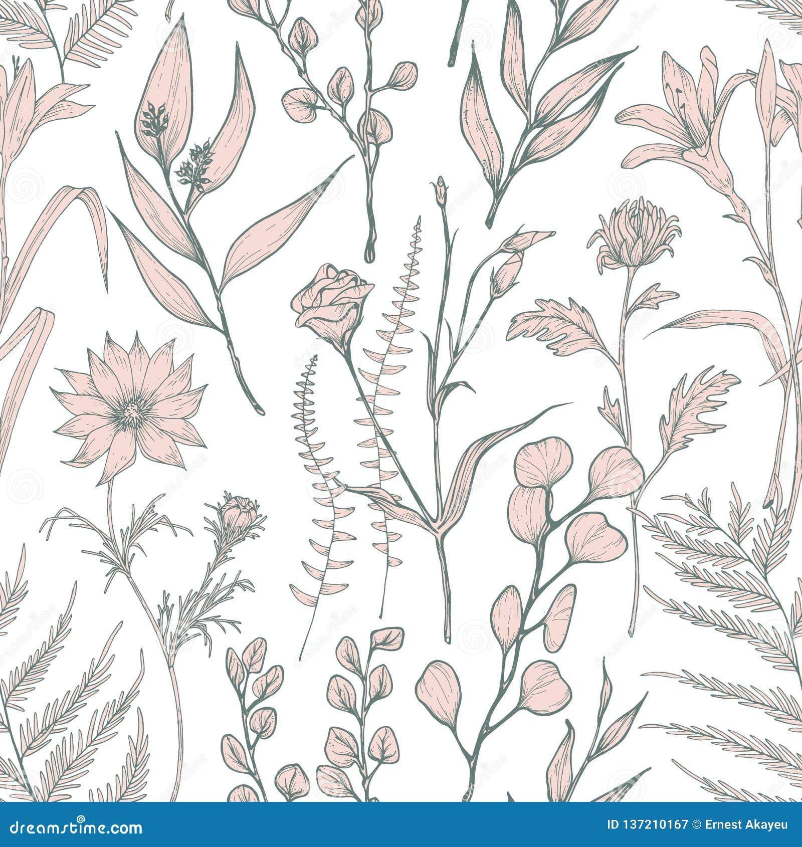 Modello senza cuciture monocromatico con i fiori selvaggi di fioritura disegnati a mano su fondo bianco Contesto naturale con ele