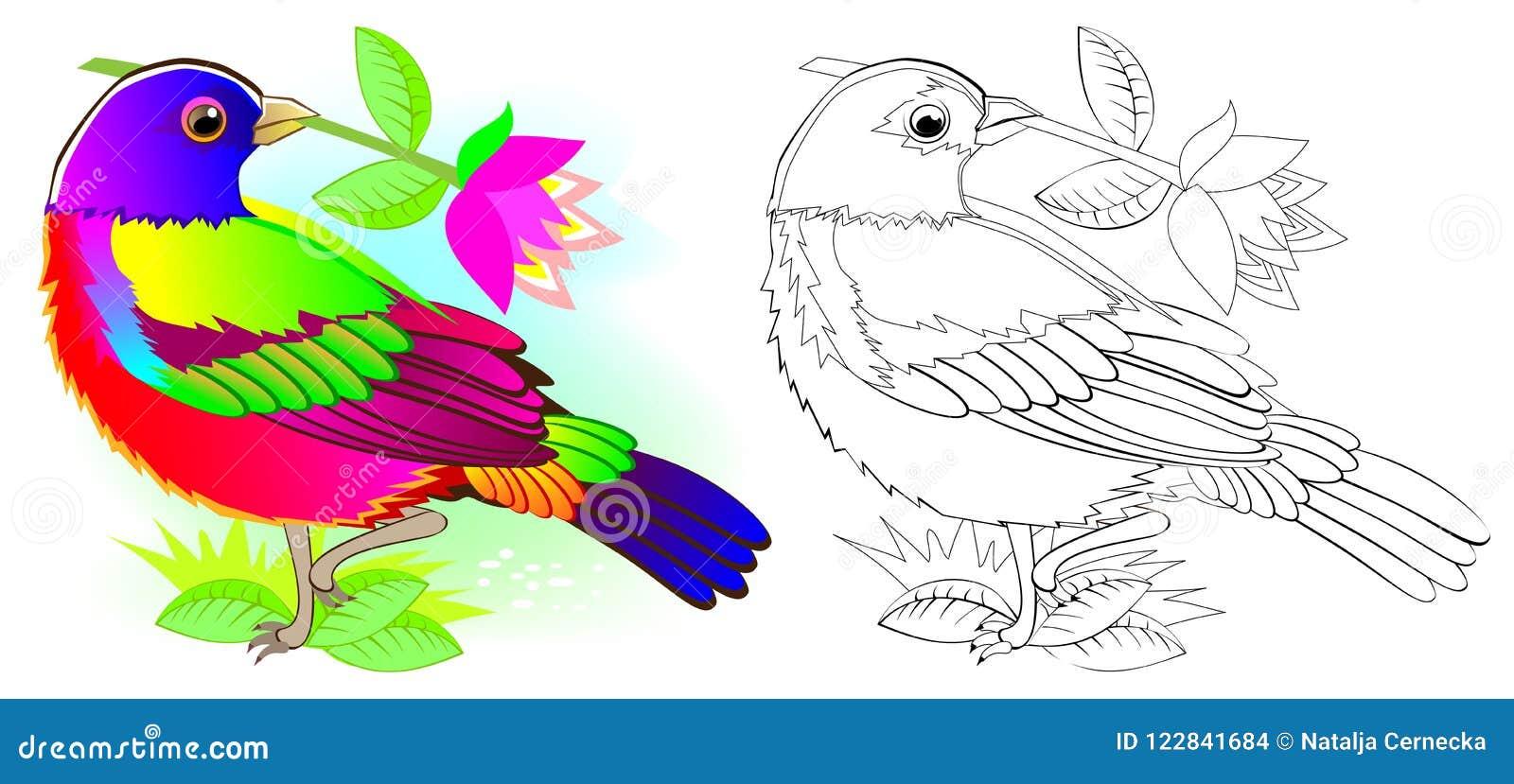 Modelo Colorido Y Blanco Y Negro Para Colorear Ejemplo Del