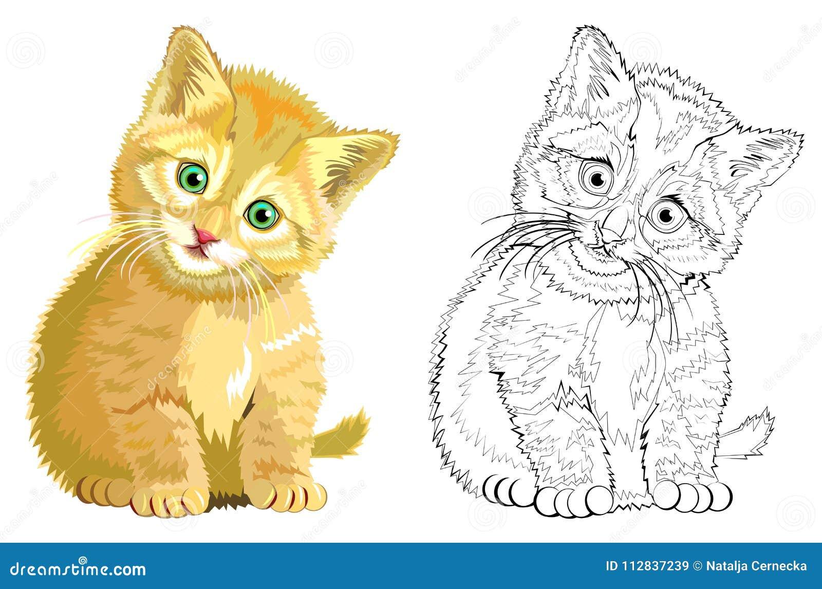 Famoso Hoja Para Colorear Hola Gatito Inspiración - Dibujos Para ...
