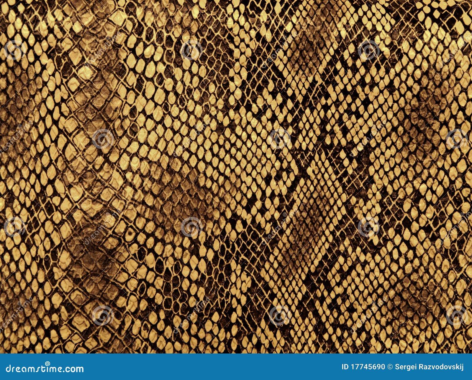 Modelo de la piel de serpiente