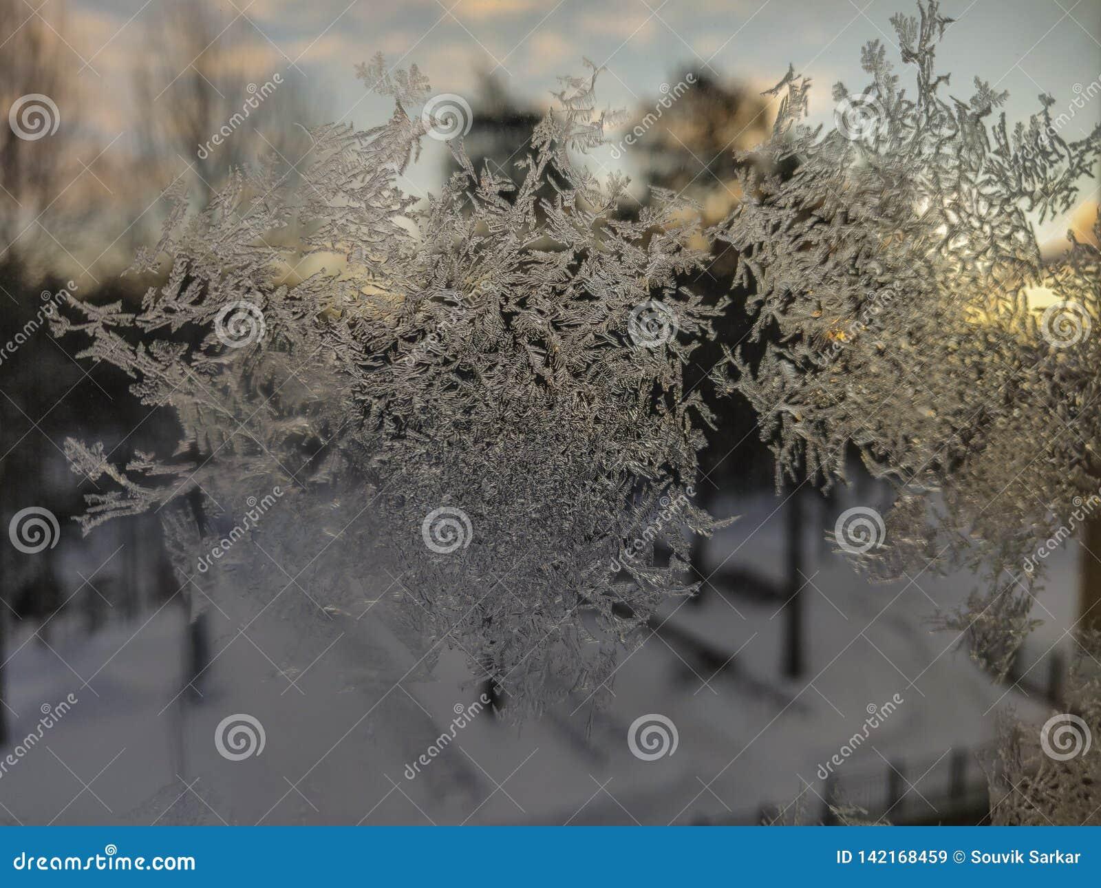 Modelo de los cristales de hielo en la opinión del primer del vidrio de la ventana