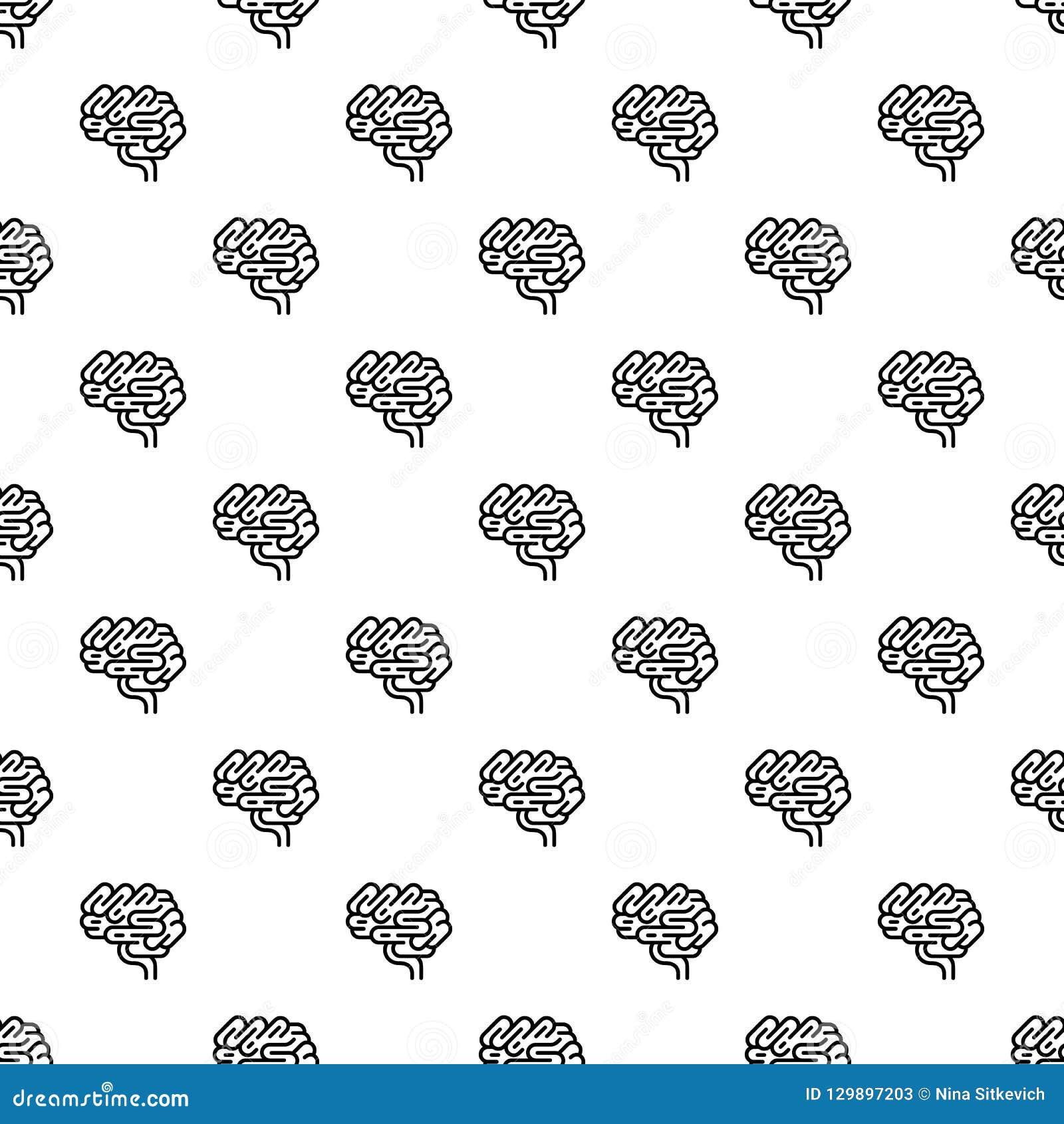 Modelo del órgano del cerebro inconsútil