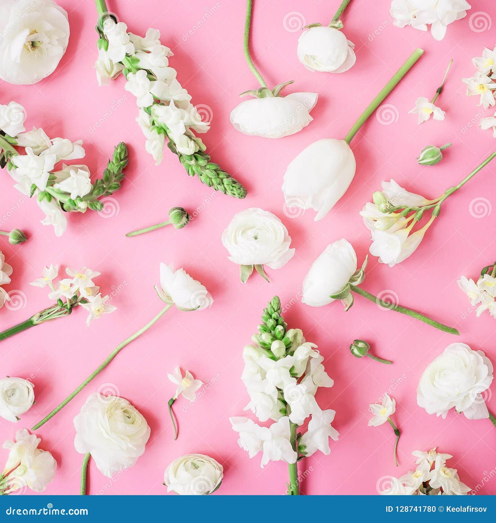 Modelo En Colores Pastel Floral De Las Flores Blancas En Fondo