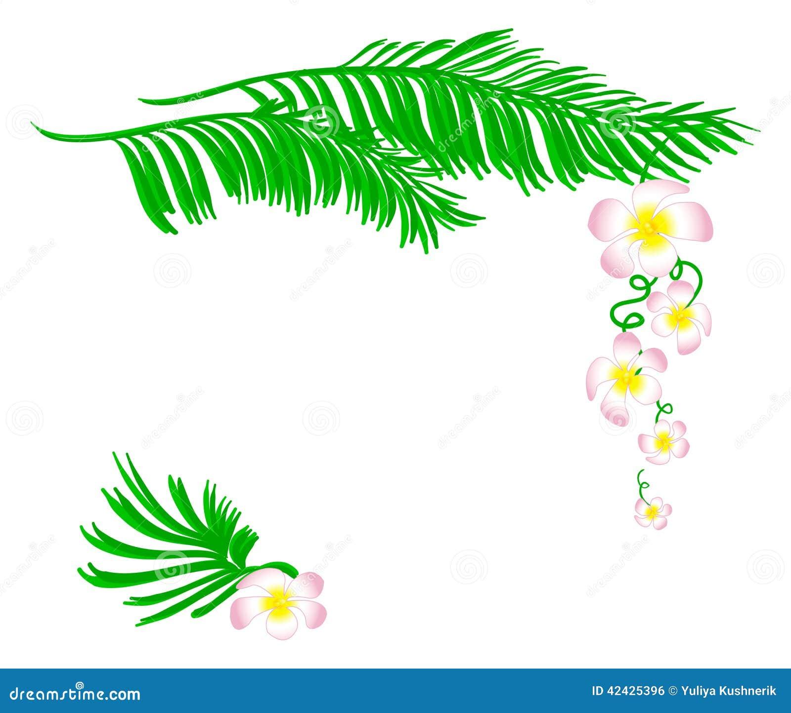 Modelo floral