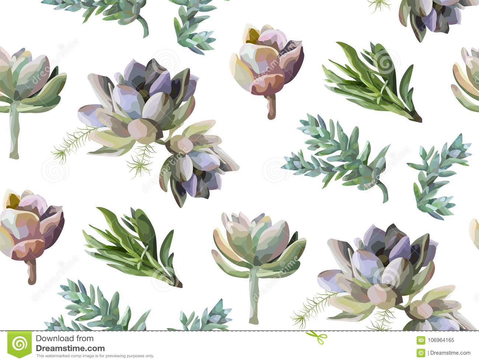 Modelo inconsútil: Acuarela suculenta b dibujado mano de la planta de la flor