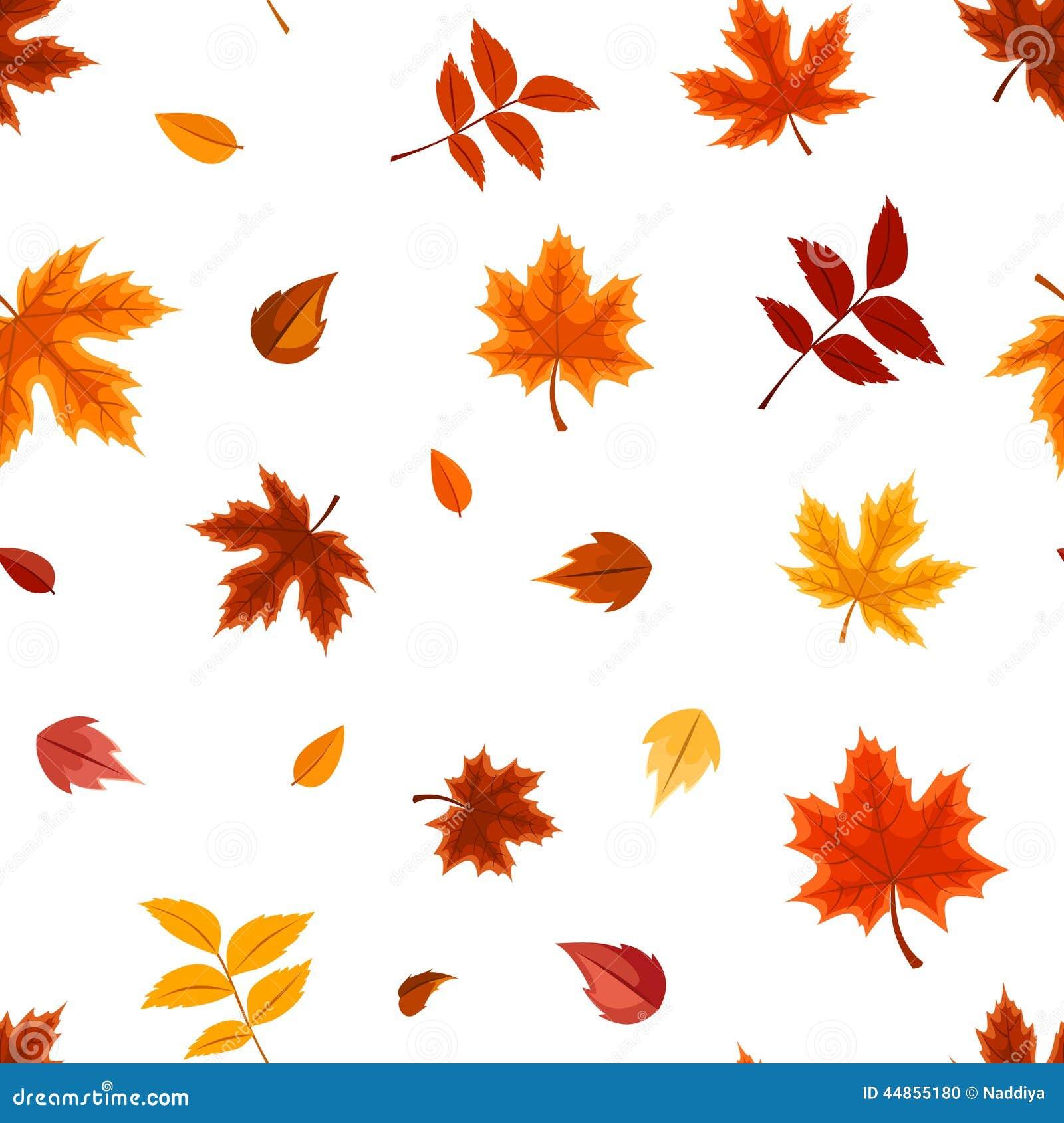 Modelo inconsútil con las diversas hojas de otoño en blanco Ilustración del vector