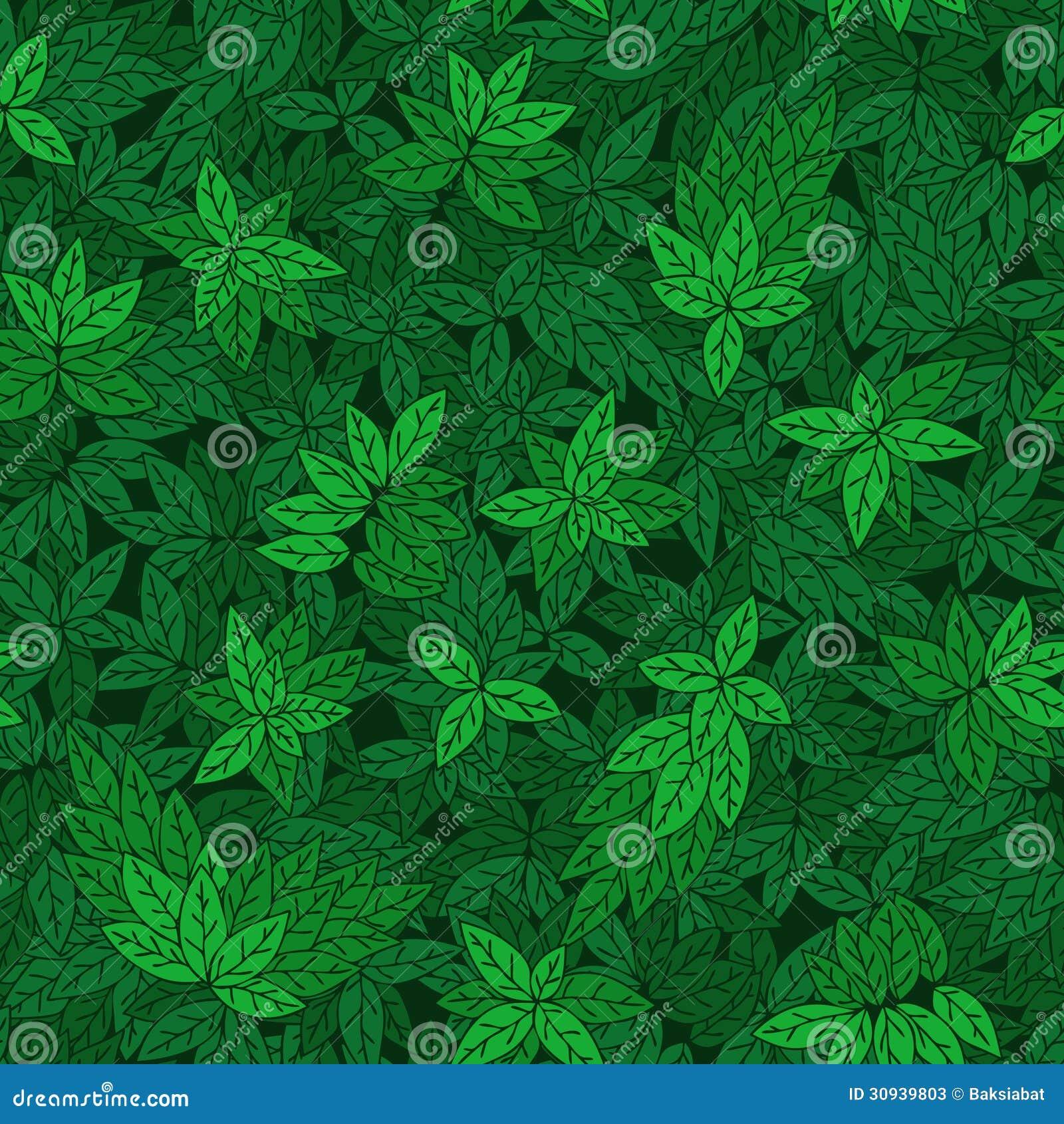 Modelo incons til con las ramas verdes de rboles fotos de - Papel pintado ramas arbol ...