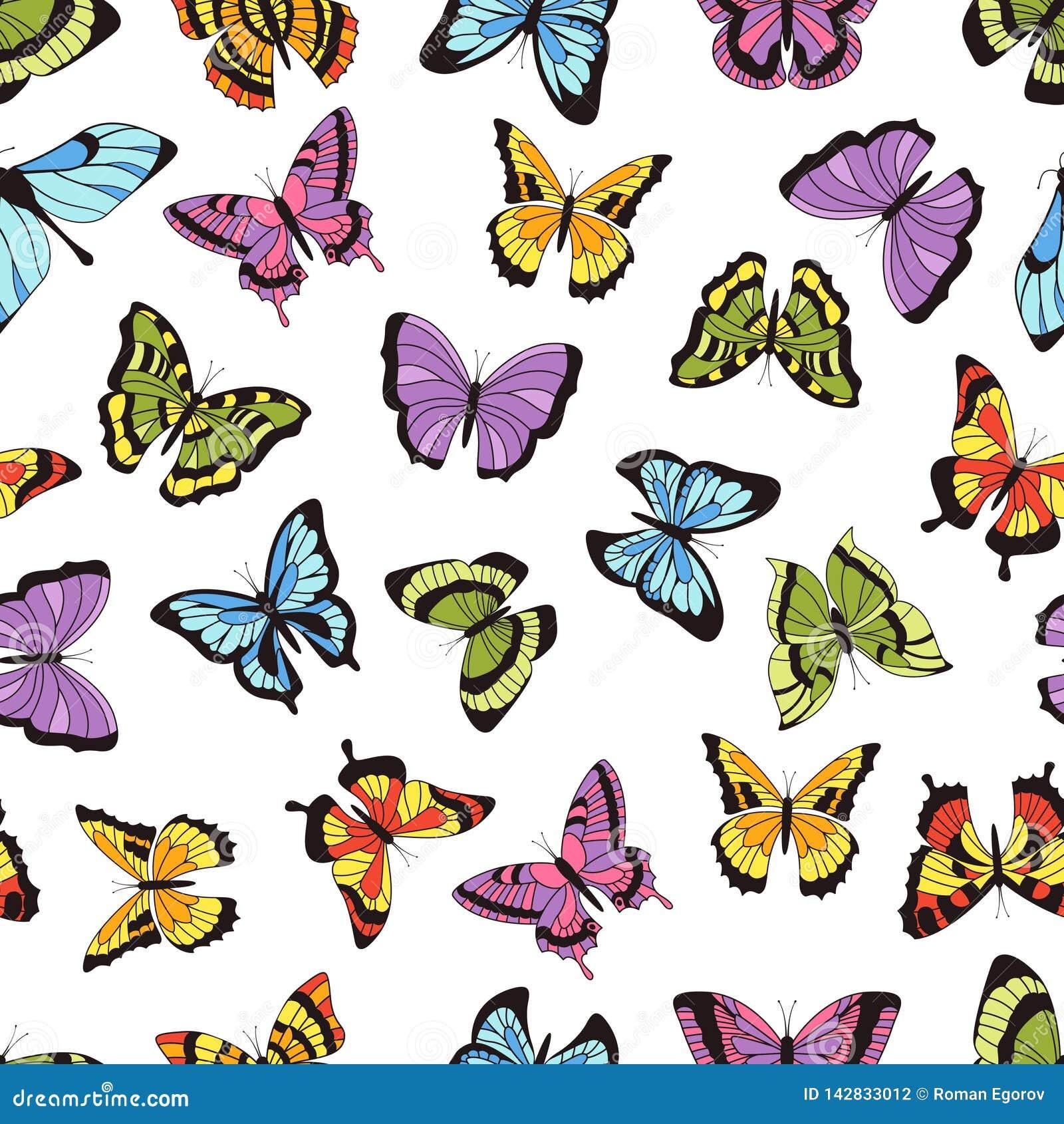 Modelo inconsútil de la mariposa Impresión floral del jardín, fondo gráfico inconsútil con las mariposas y flores Mano del vector