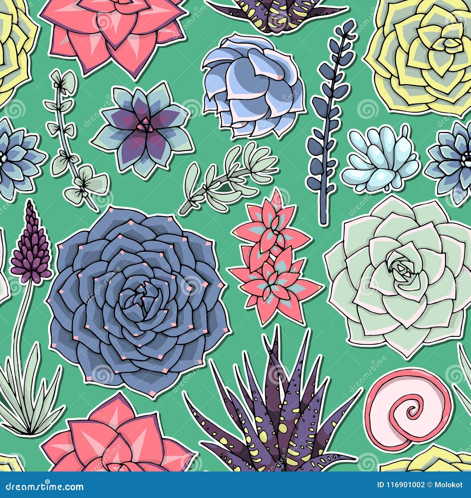 Modelo inconsútil de los Succulents Ornamento suculento