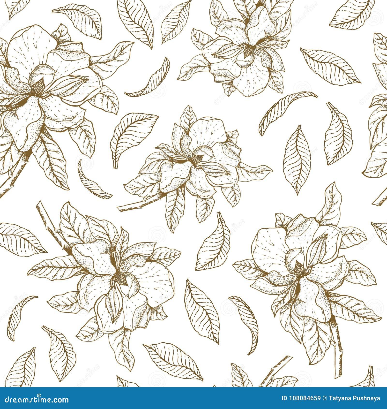 Modelo inconsútil del vector con la magnolia y las hojas Ejemplo botánico