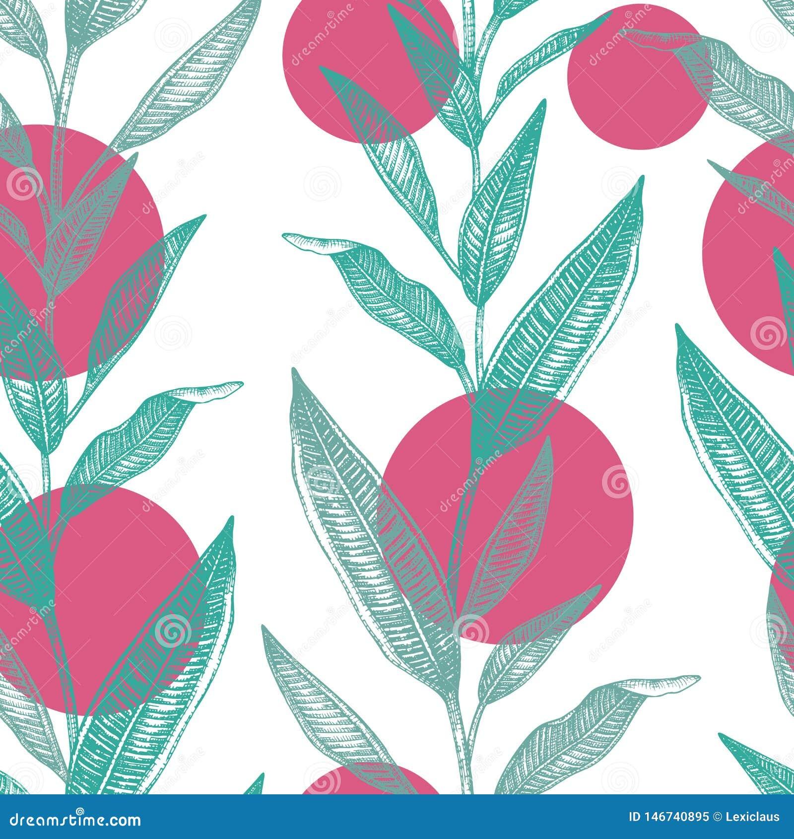 Modelo inconsútil del vector de hojas tropicales verdes con los círculos rosados aislados en el fondo blanco