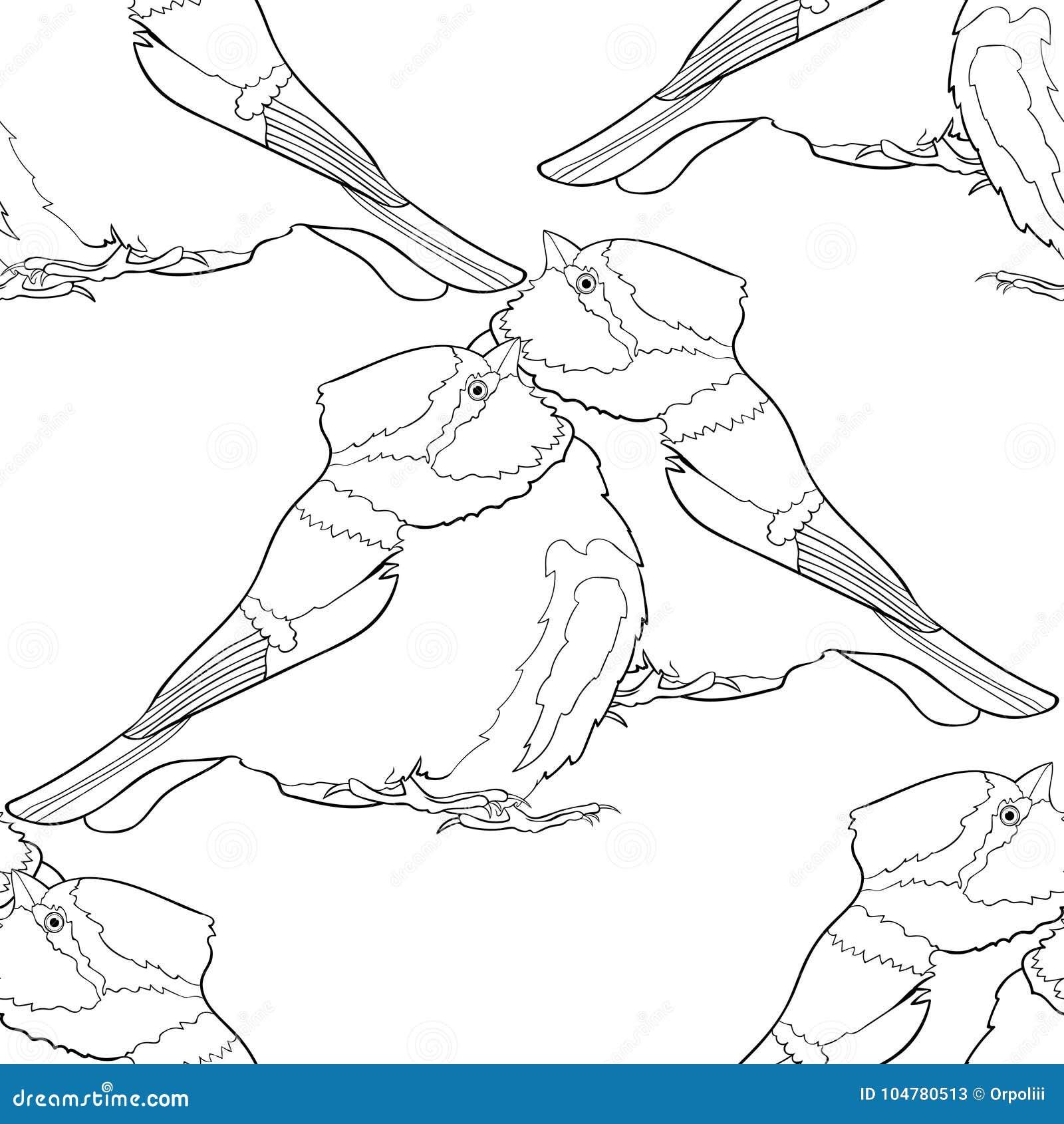 Vistoso Página Para Colorear De Pájaro Enojado Azul Cresta - Ideas ...