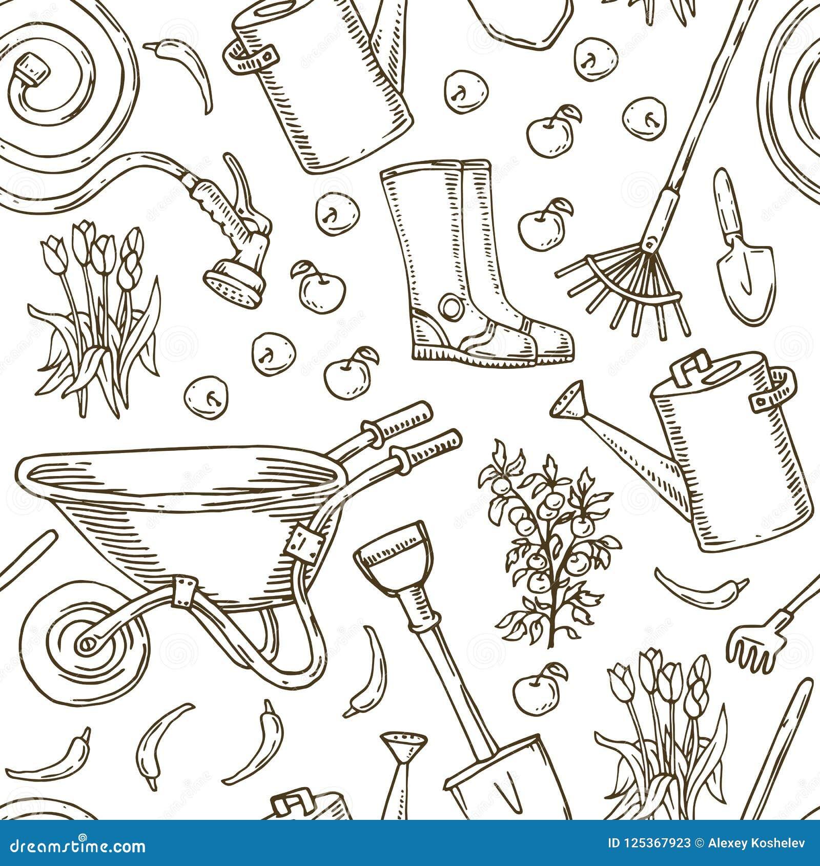 Modelo Para Colorear Utensilios De Jardinería Y Verduras Ilustración