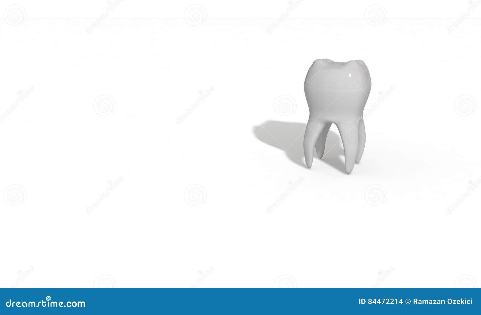 Modelo tridimensional do dente feito para a saúde