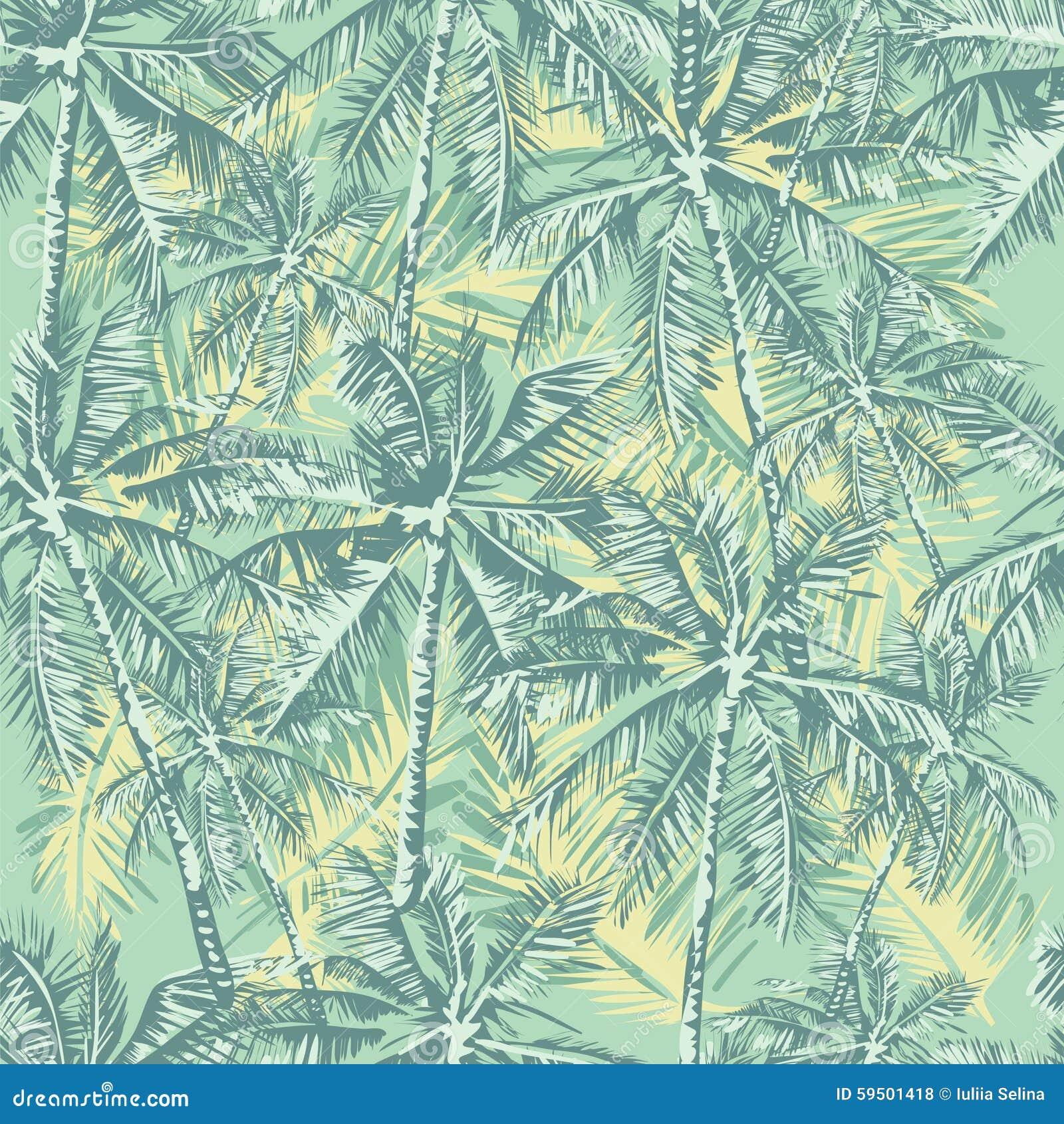 Modelo tropical