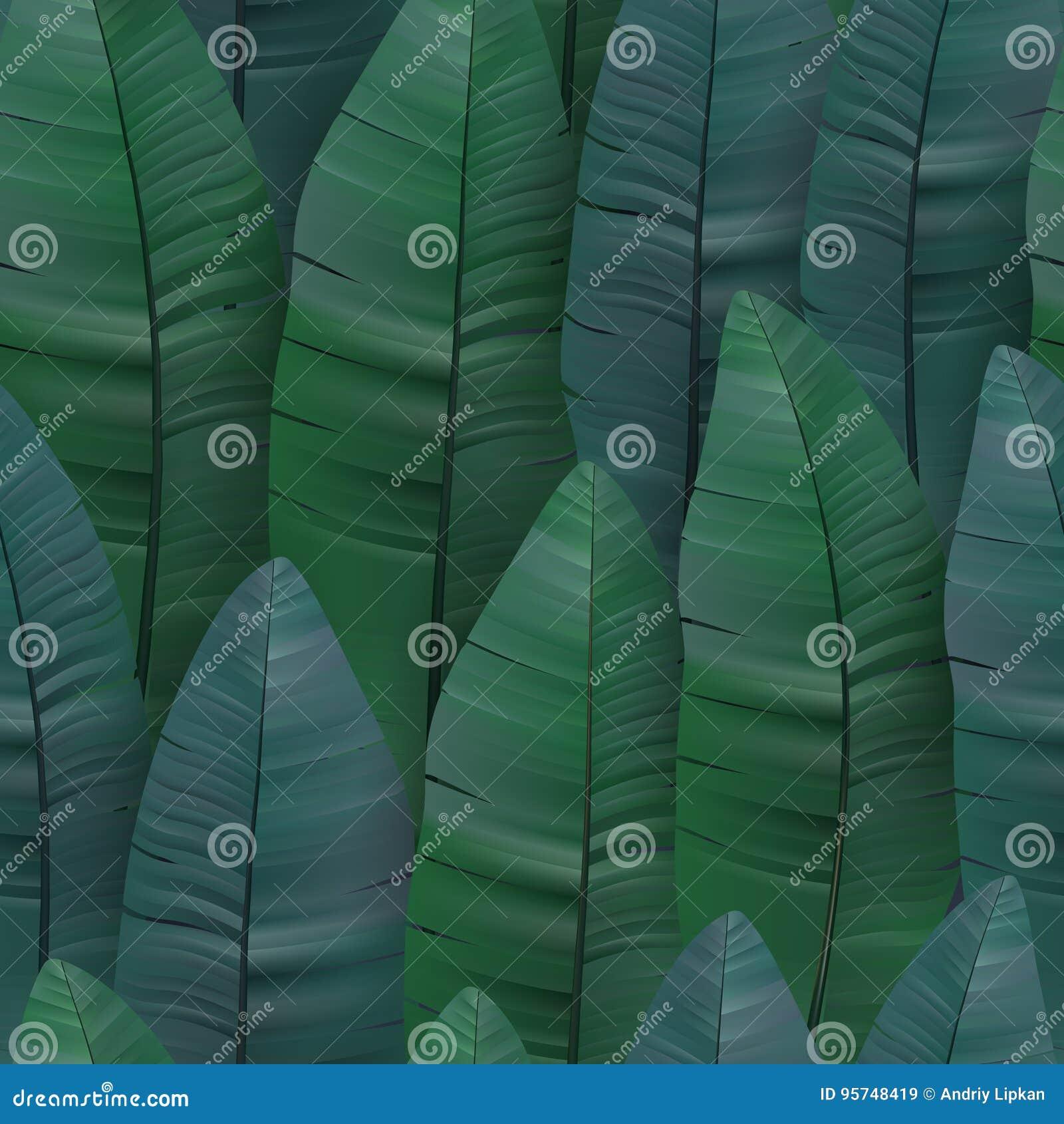 Modelo tropical inconsútil con las hojas del plátano Ilustración del vector