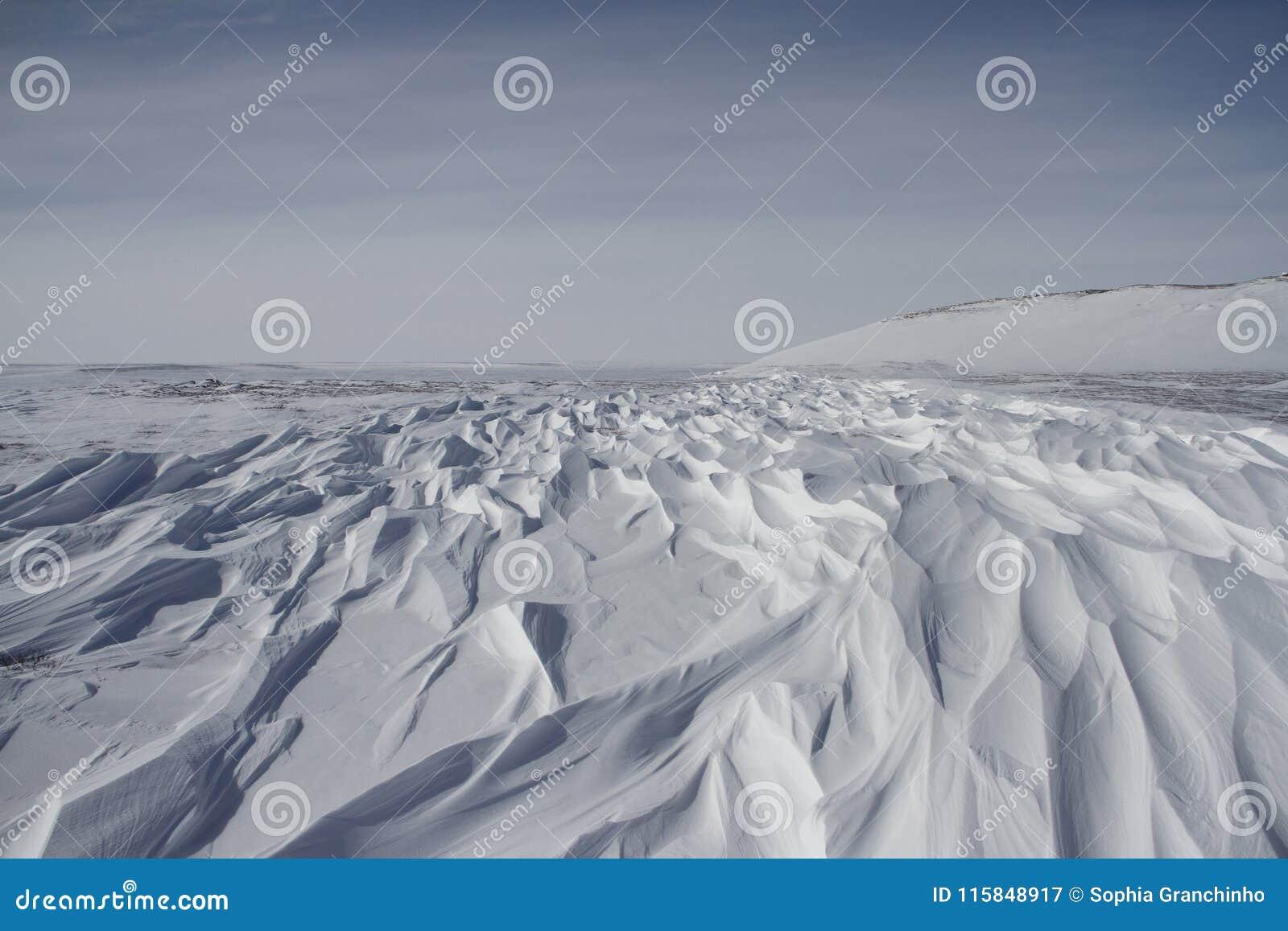 Modelos hermosos del sastrugi, cantos ondulados paralelos causados por los vientos en superficie de la nieve dura