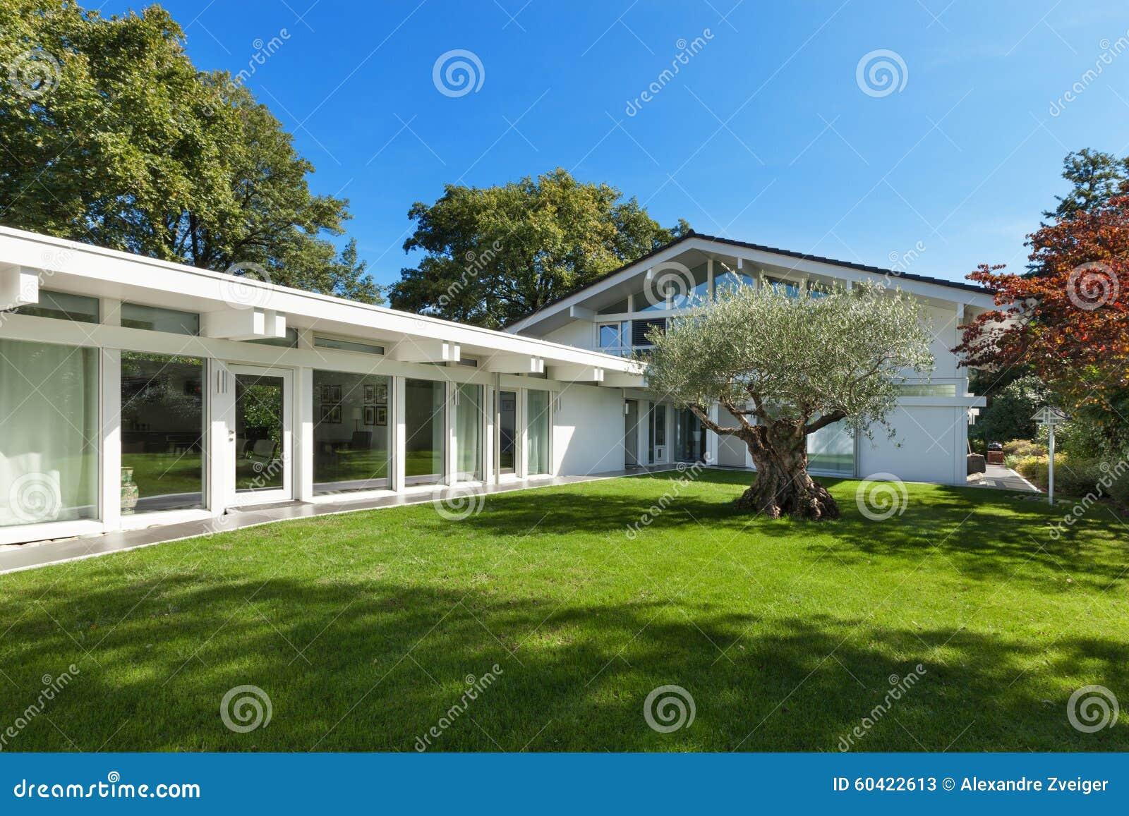 Moden房子的美丽的庭院