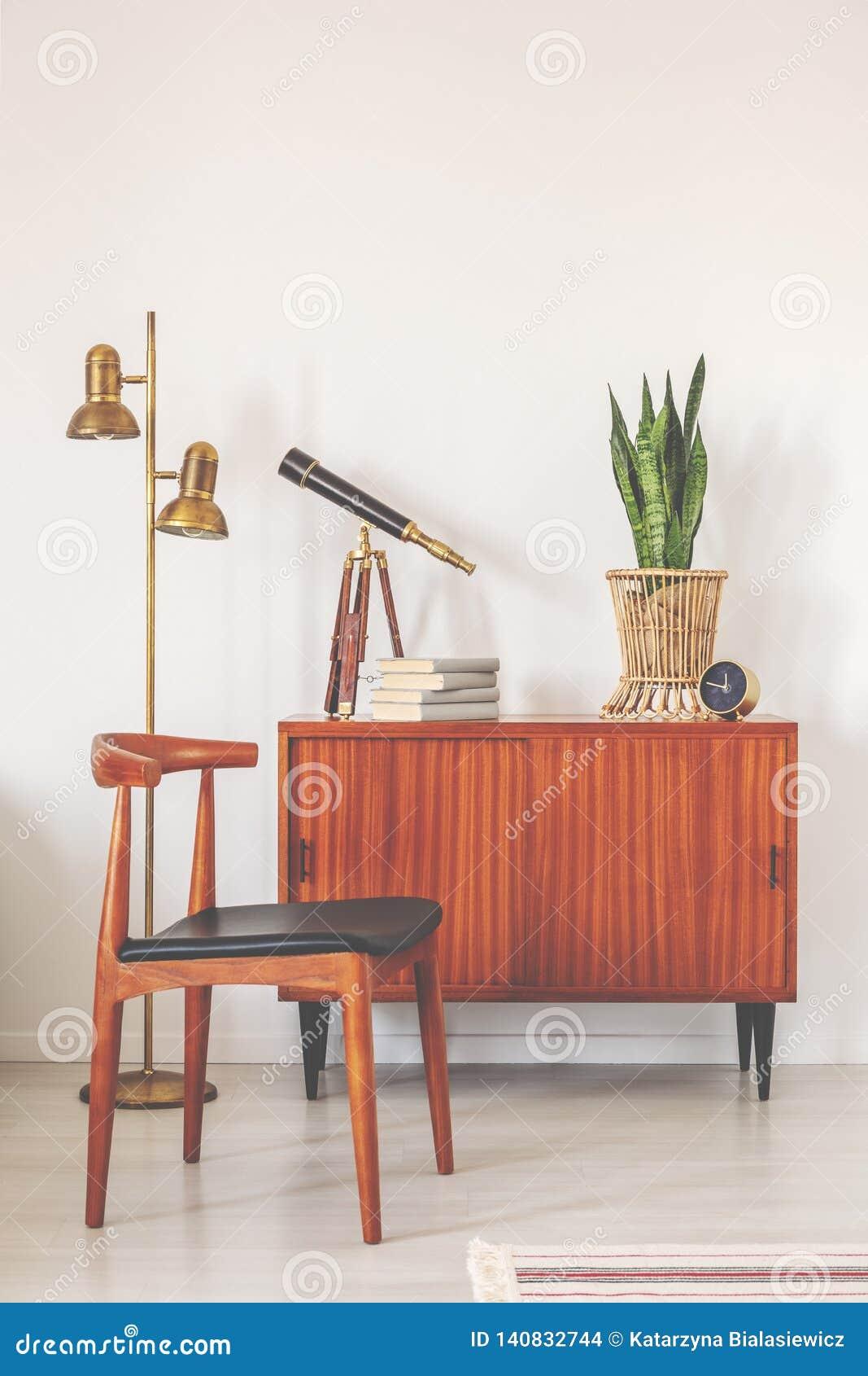 Moderiktig trästol bredvid det retro kabinettet med böcker och växten i krukan, verkligt foto med kopieringsutrymme på den tomma