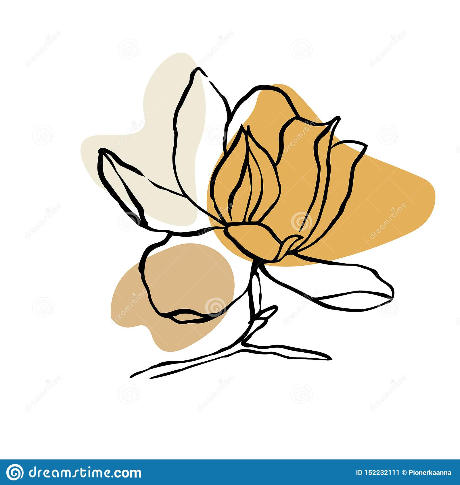 Modern Abstract Shapes Vector Background Or Layout Contour Line Drawing Flower Of Magnolia Modern Minimalism Art Aesthetic Con Stock Vector Illustration Of Bauhaus Contemporary 152232111