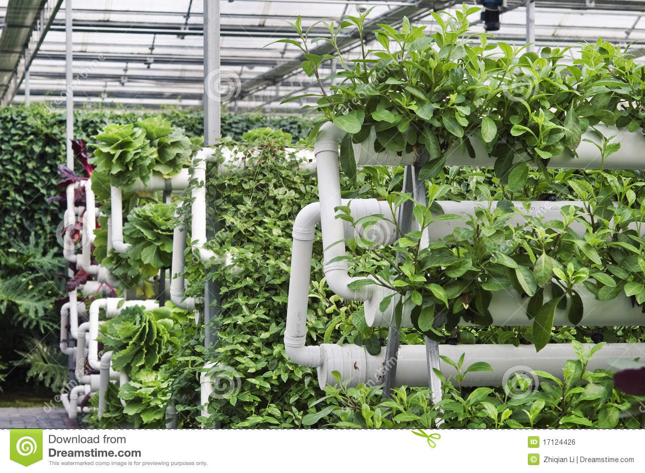 modern agriculture The answers to modern food production global problems hinge on the  widespread implementation of regenerative farming and decentralized.
