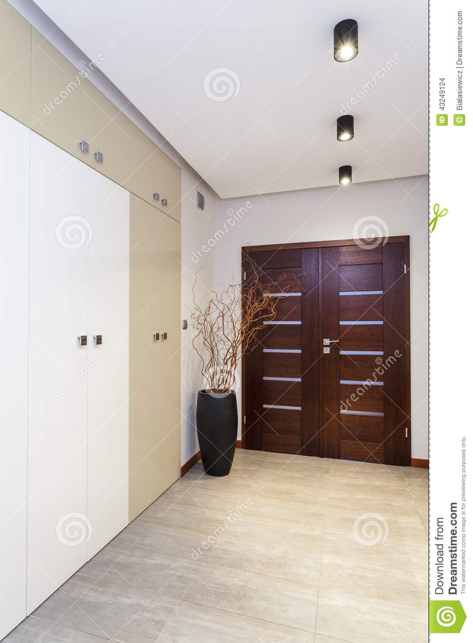 Modern Anteroom In The Apartment Stock Photo Image 43249124