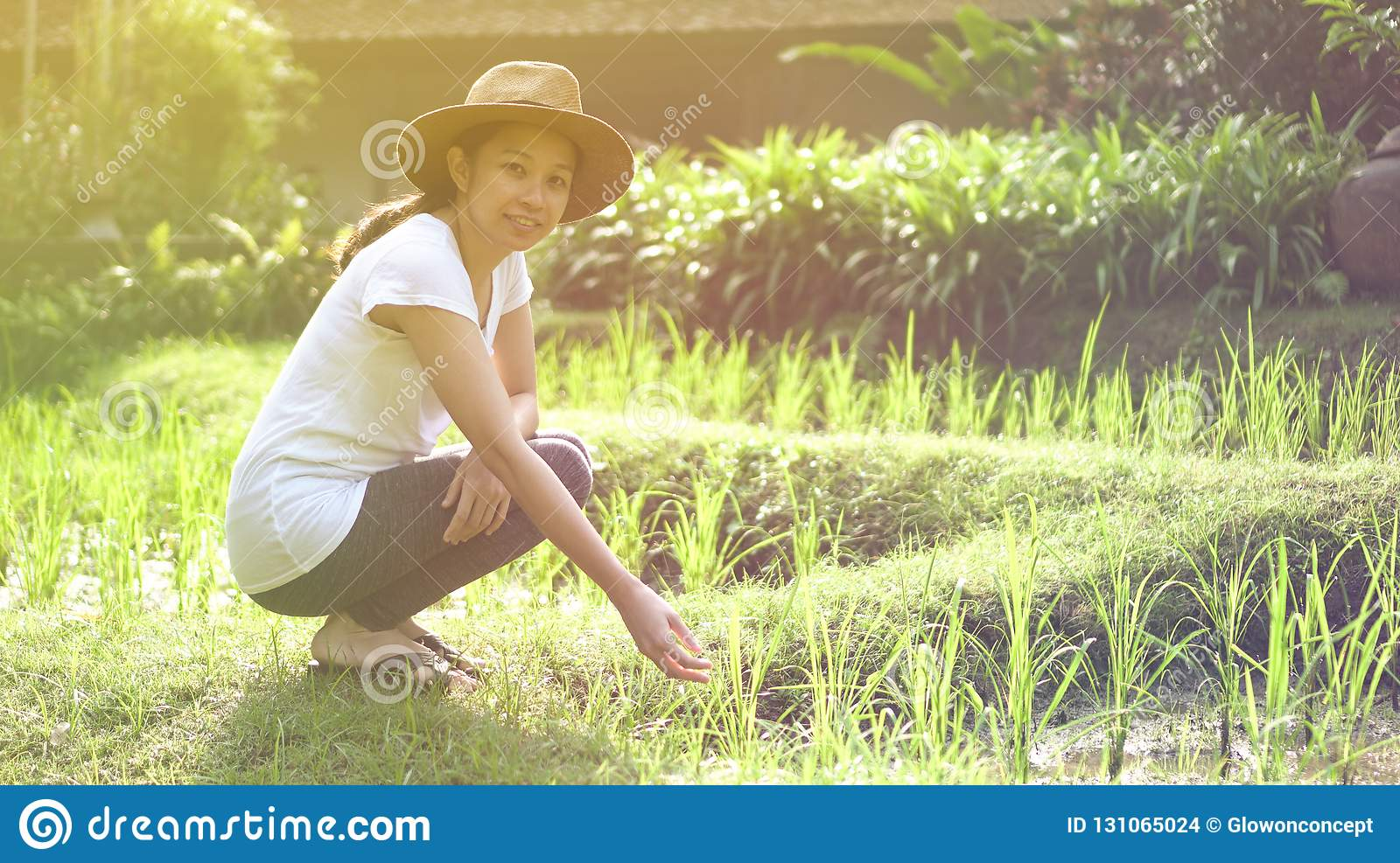 Modern Asian woman with hat at rice file, nature imerge lifestyle
