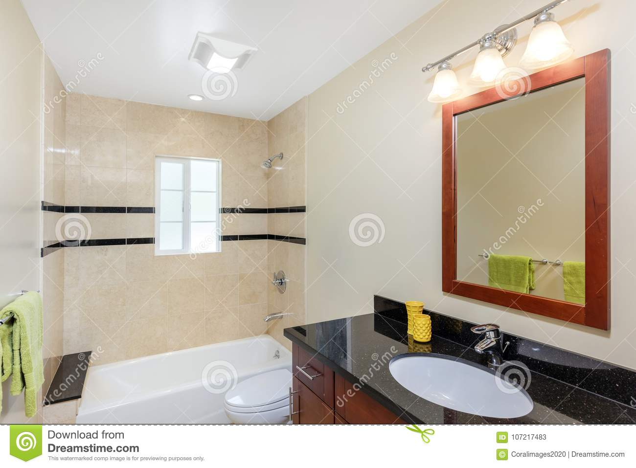 Modern Bathroom Luxury Interior With Mirror Stock Image Image Of Luxury Cabinets 107217483