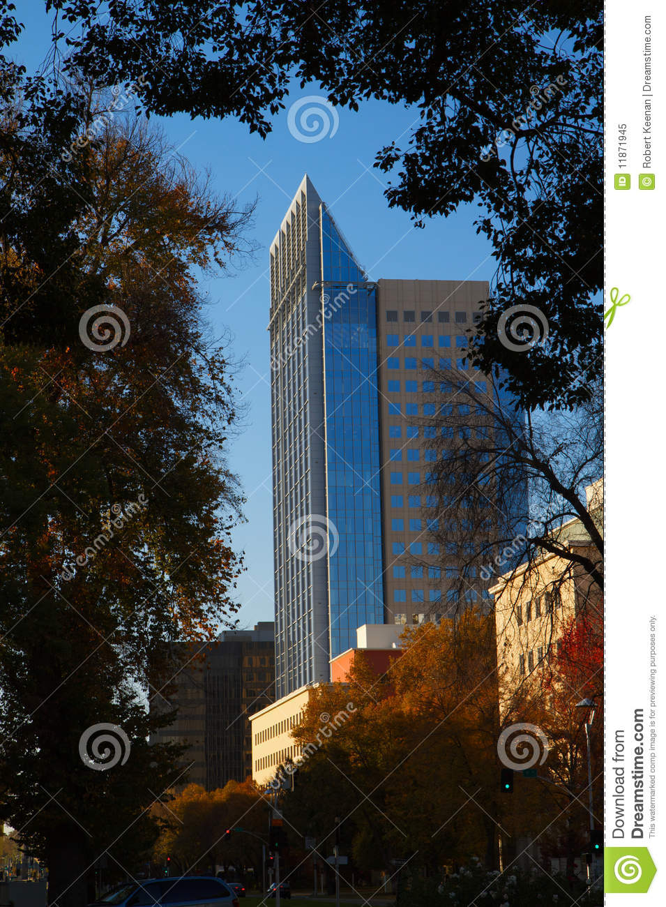 Modern building border trees with fall colors royalty free