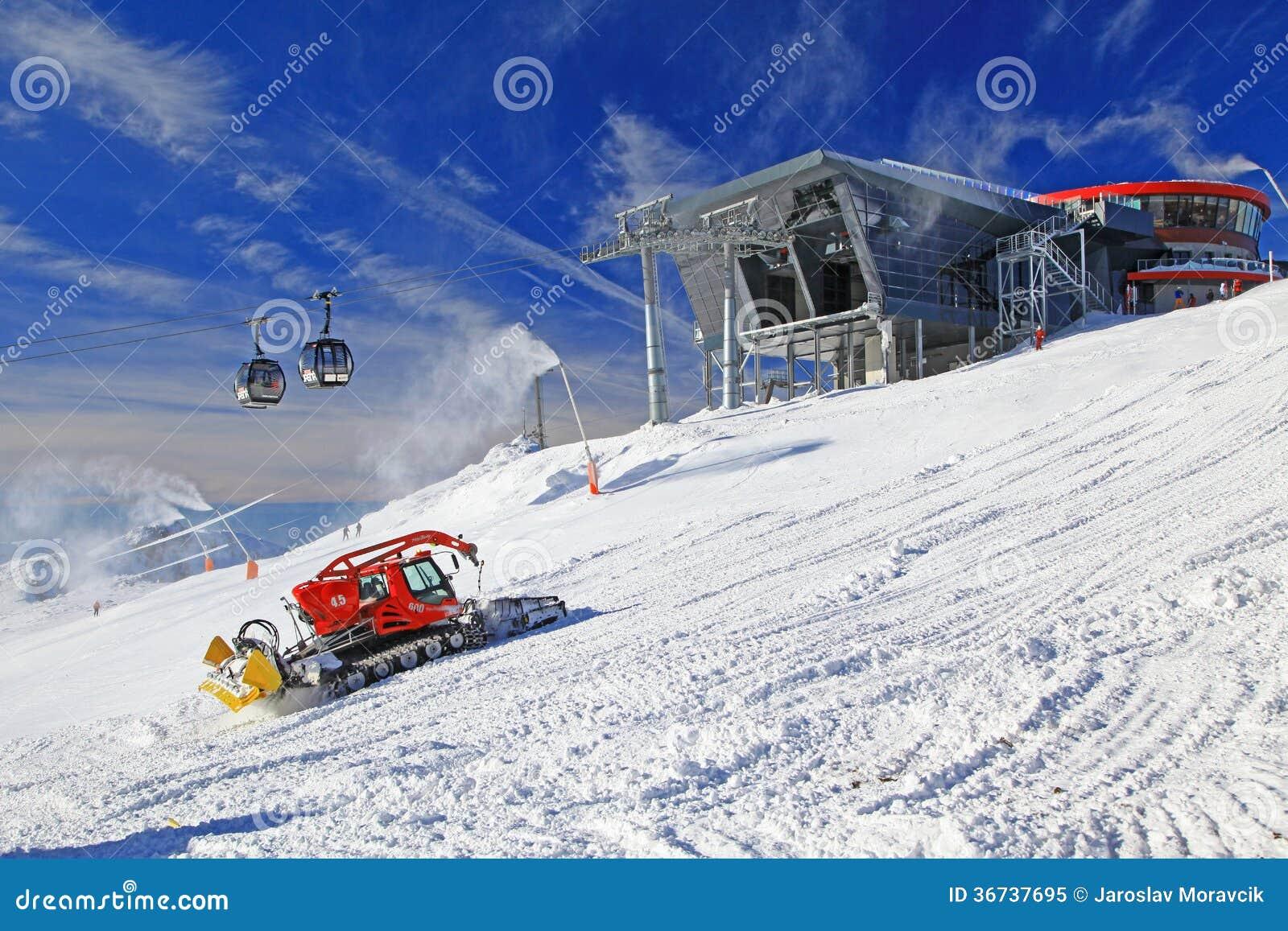 Mobile dog groomer cartoon vector for Moderne skihotels