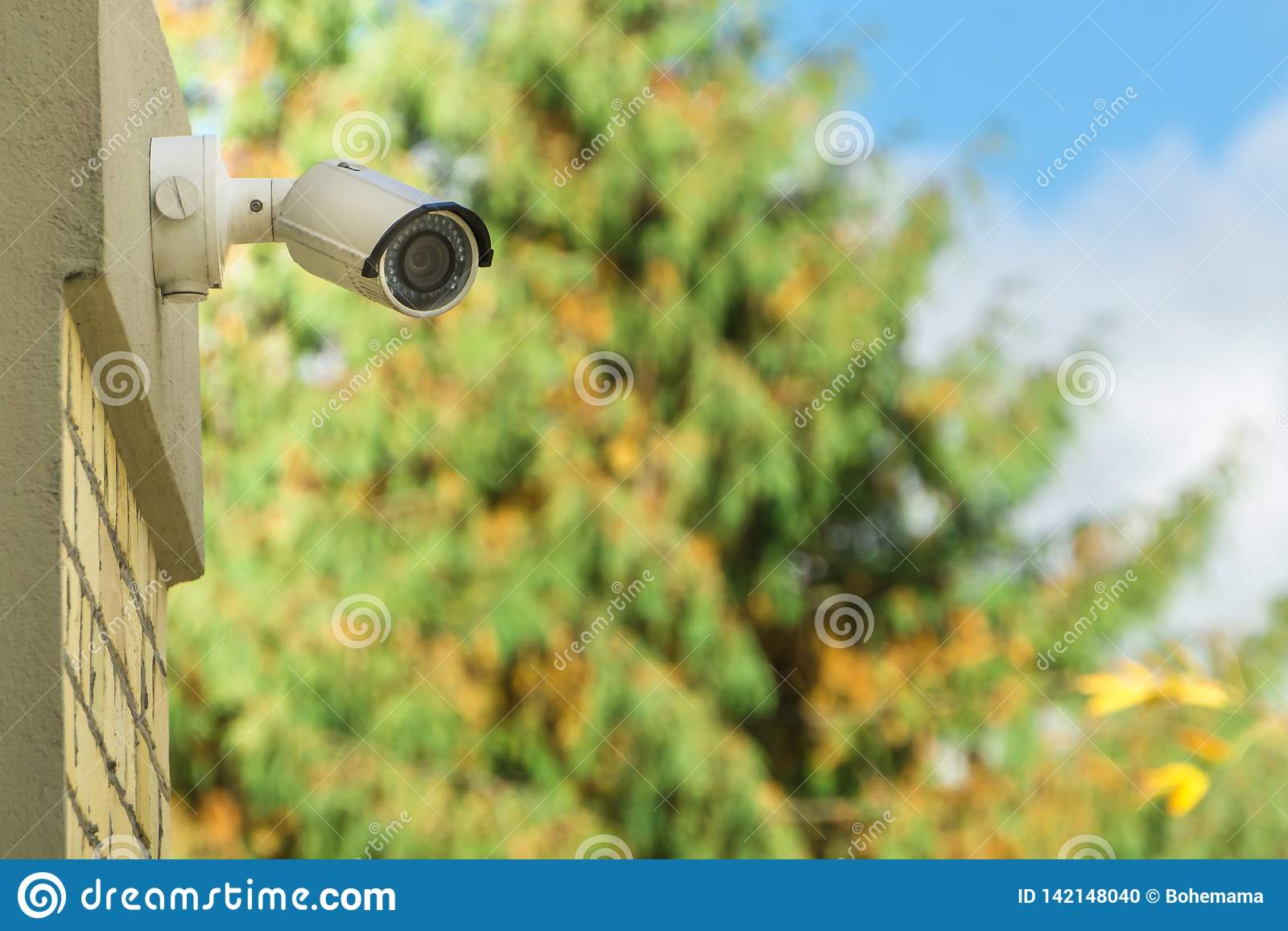 Modern CCTV security camera on building wall, foliage background