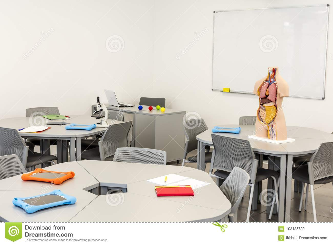 Modern Classroom Model ~ Modern classroom interior with round tables anatomy