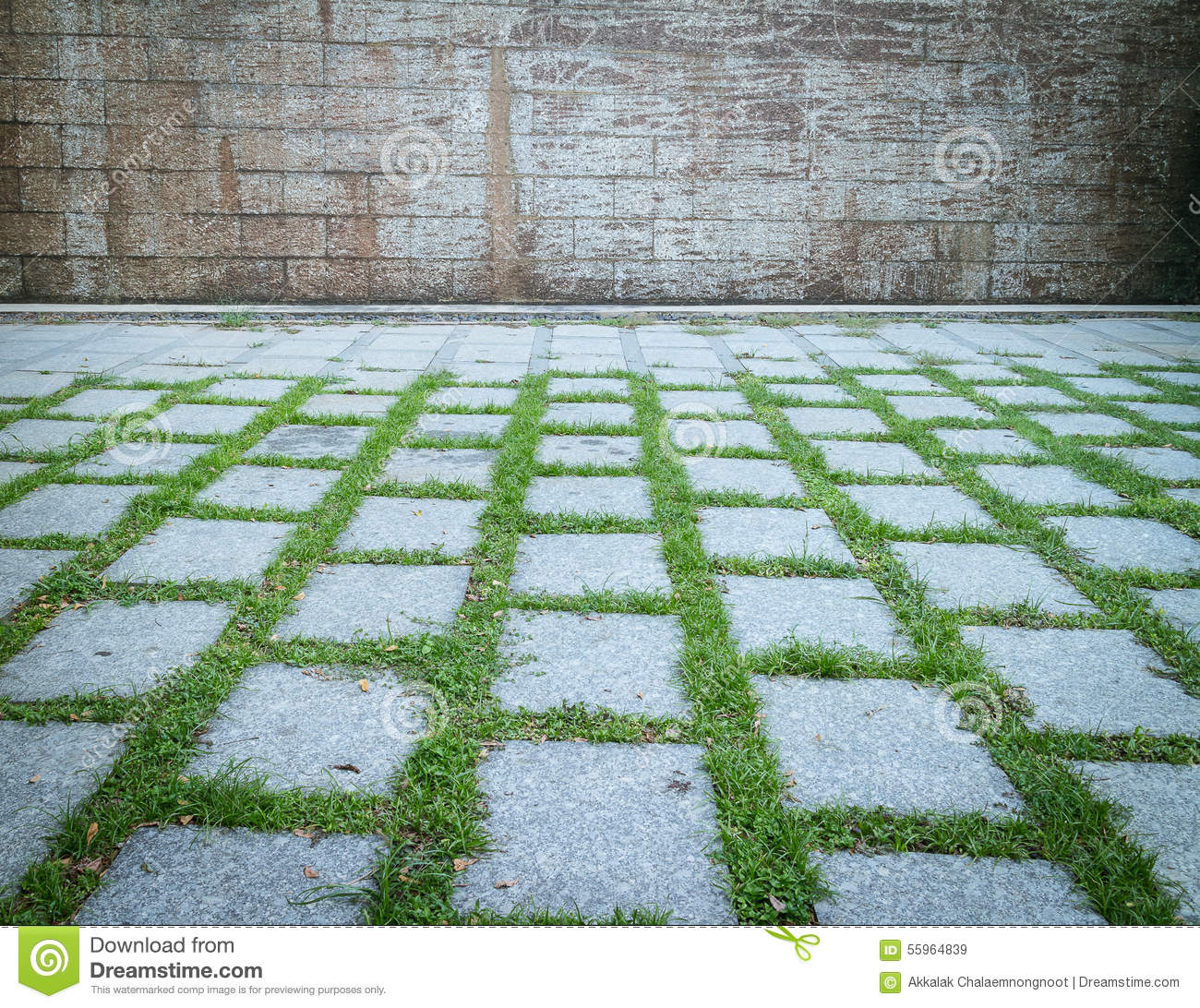 Modern design of grass floor stock image image of grass for Garden floor design