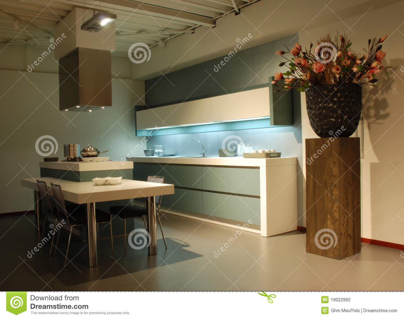 Interior design of modern green kitchen stock images   image: 9366134