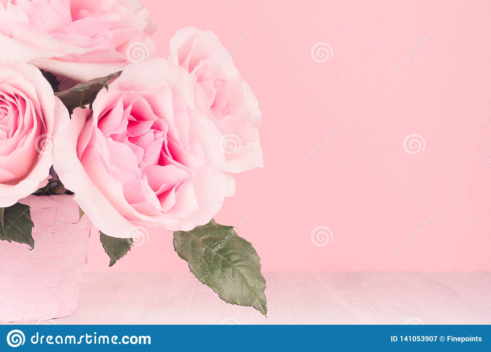 Modern fashion home interior in elegant style and pink color - rich lush roses in basket on white wood board, copy space, closeup.