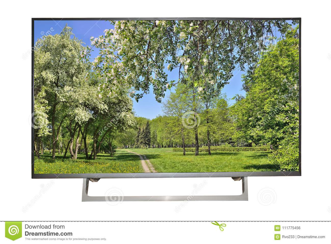 Modern high-definition TV or monitor with spring landscape on sc